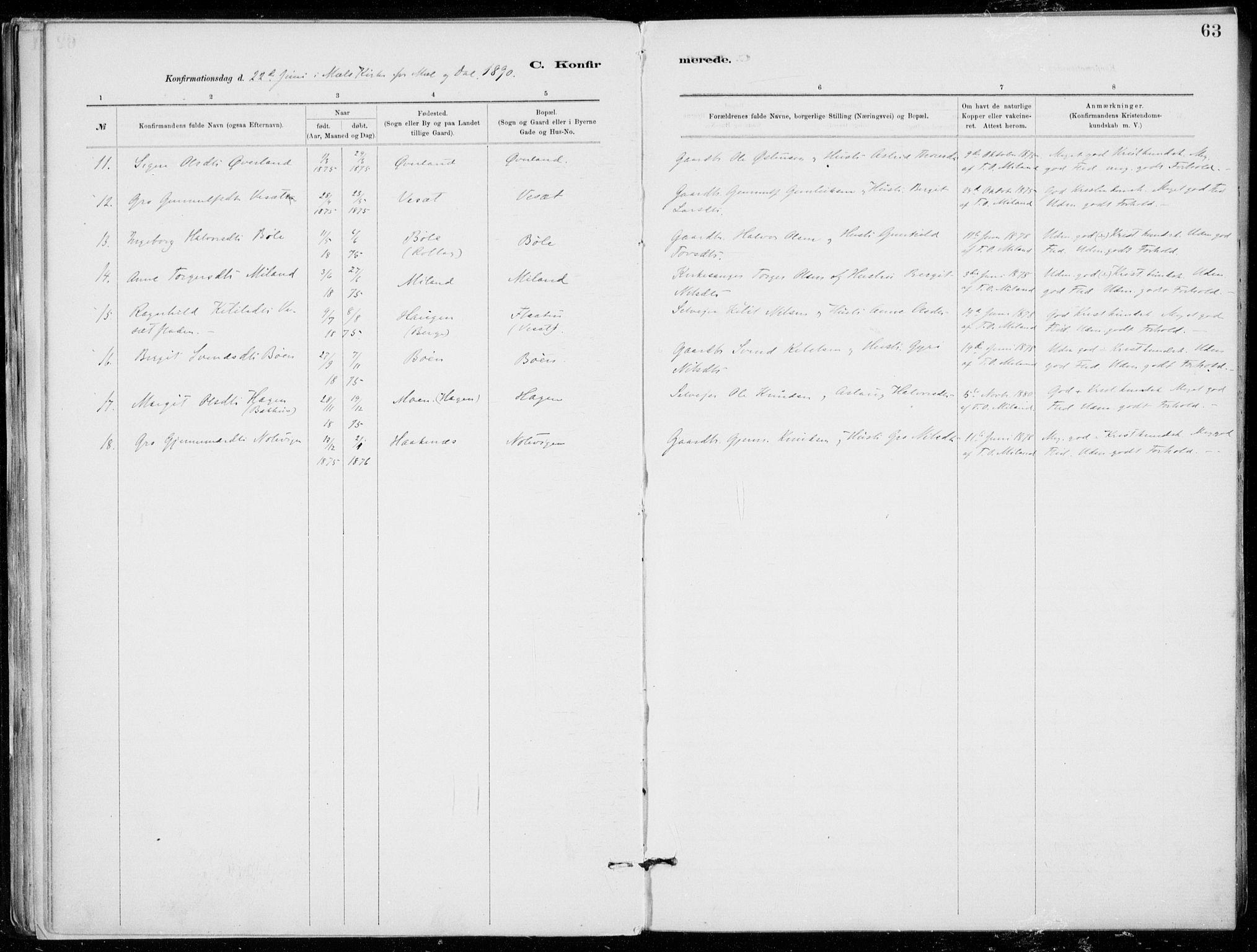 SAKO, Tinn kirkebøker, F/Fb/L0002: Ministerialbok nr. II 2, 1878-1917, s. 63