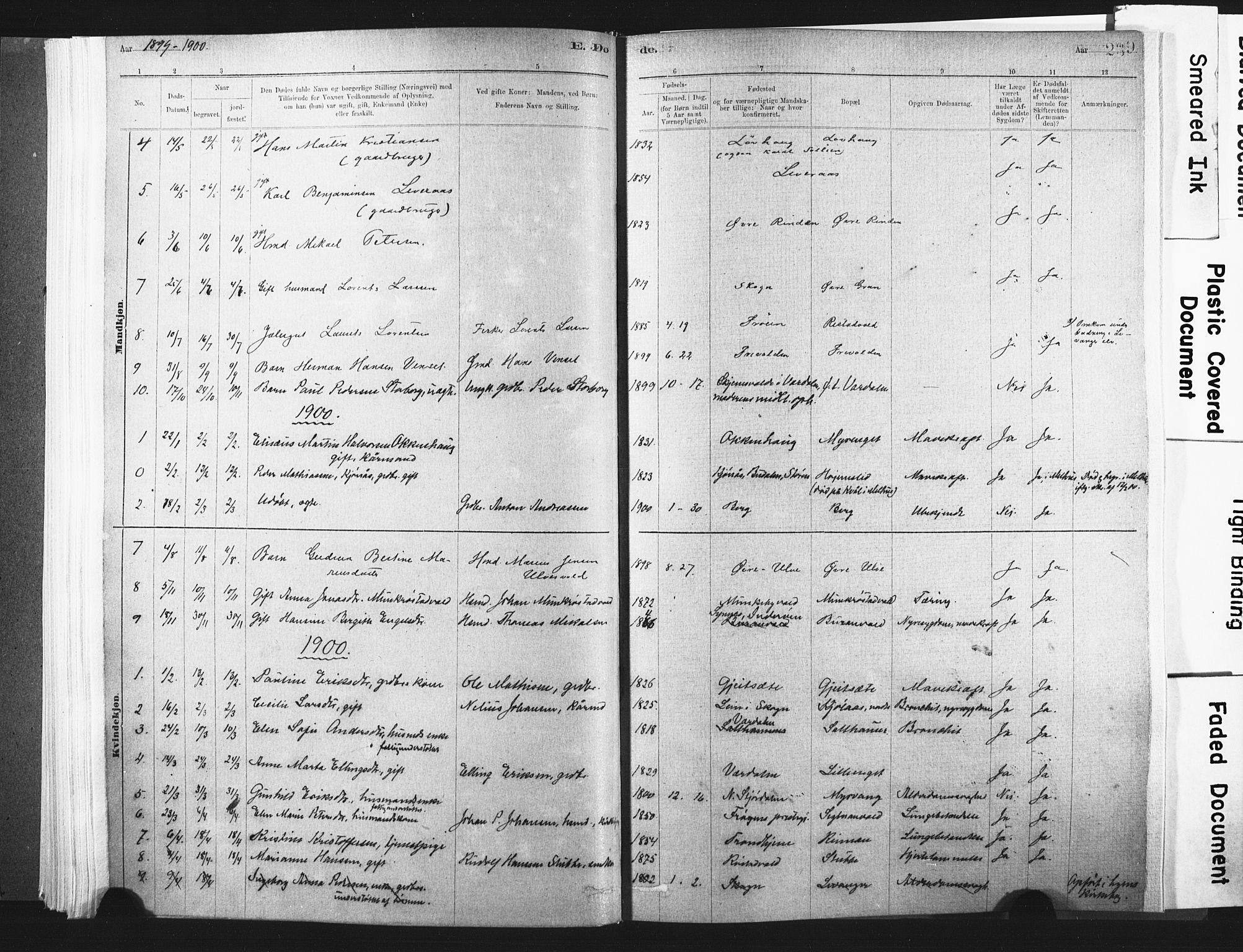 SAT, Ministerialprotokoller, klokkerbøker og fødselsregistre - Nord-Trøndelag, 721/L0207: Ministerialbok nr. 721A02, 1880-1911, s. 239