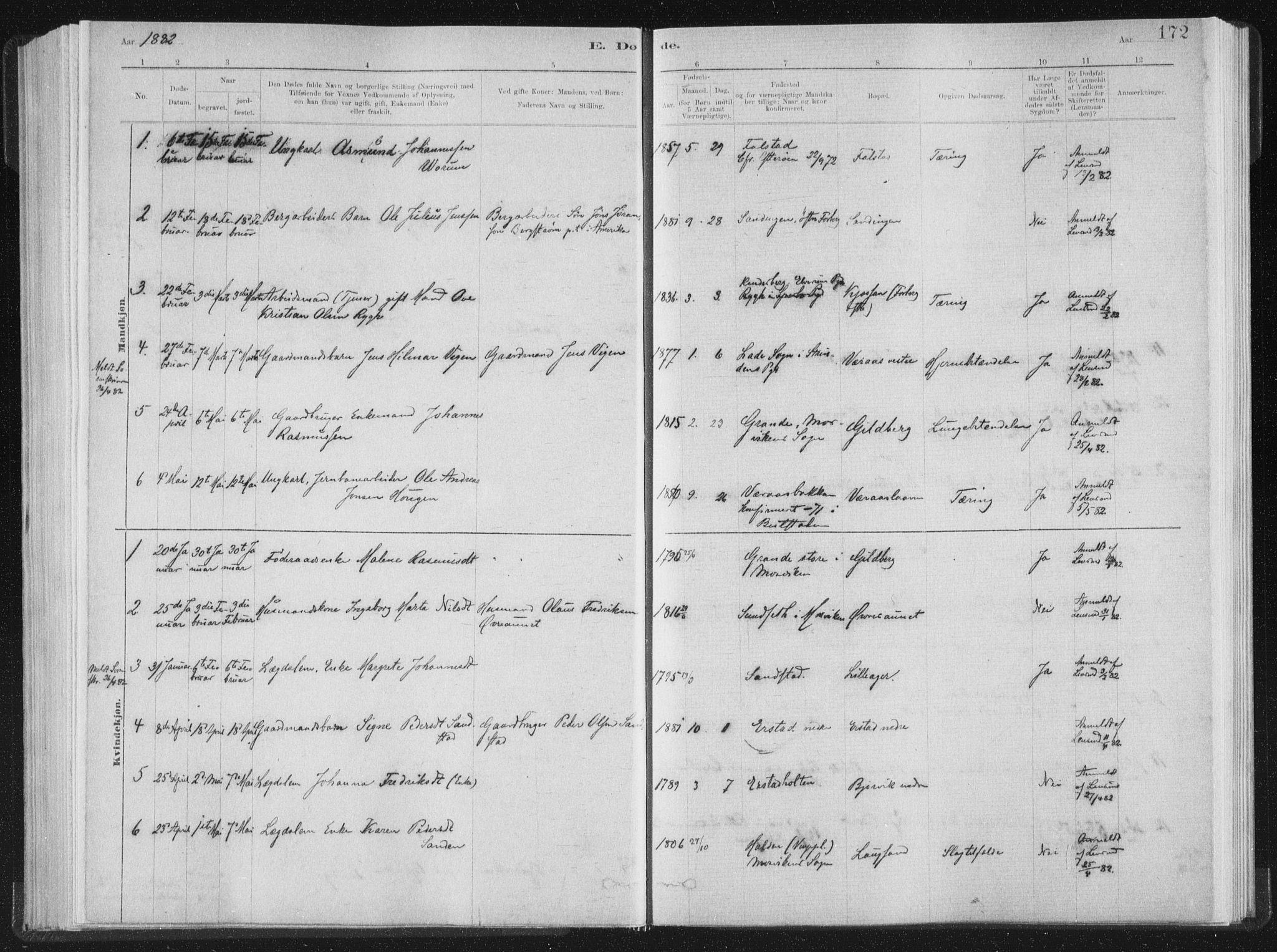 SAT, Ministerialprotokoller, klokkerbøker og fødselsregistre - Nord-Trøndelag, 722/L0220: Ministerialbok nr. 722A07, 1881-1908, s. 172