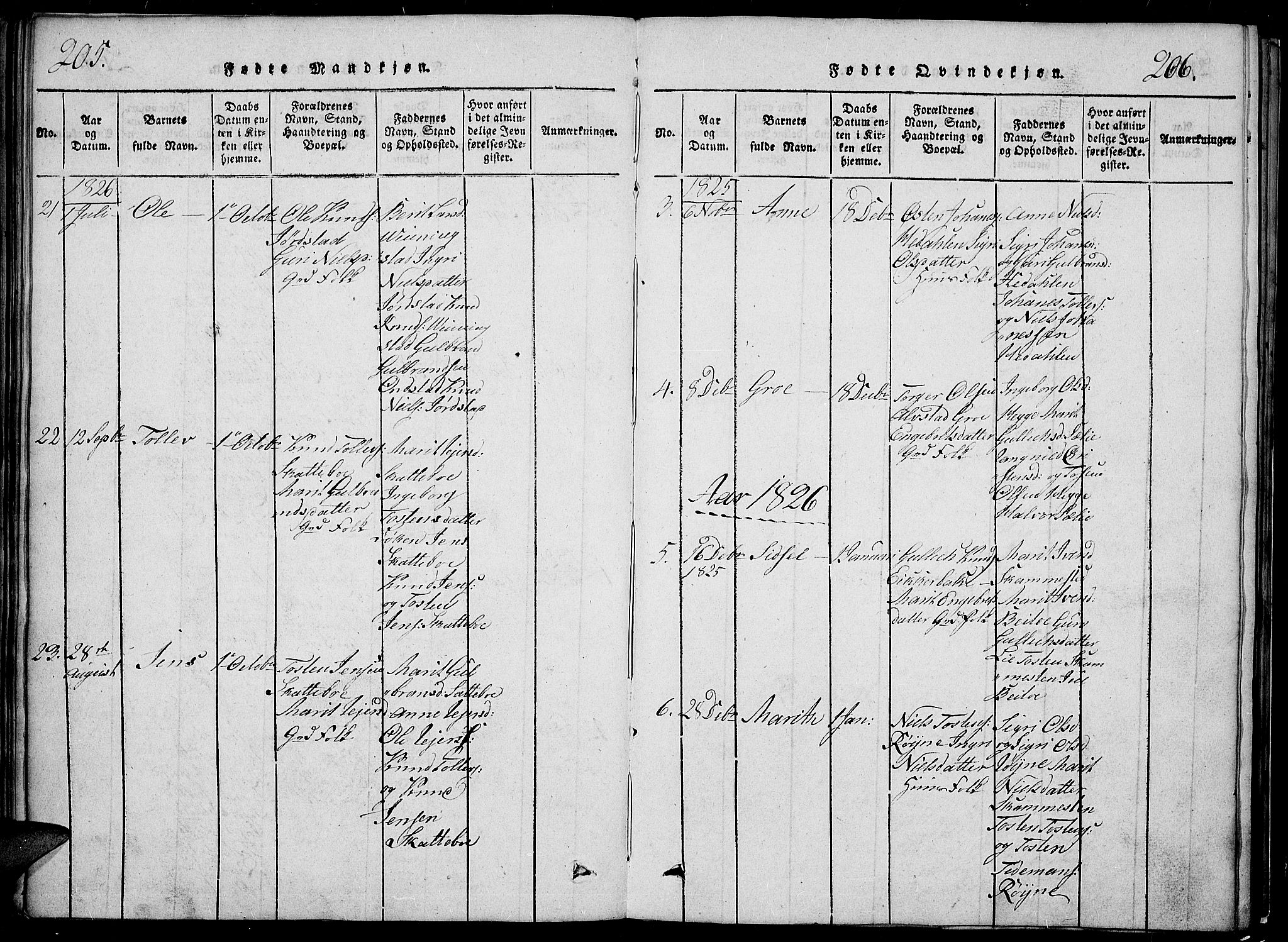 SAH, Slidre prestekontor, Klokkerbok nr. 2, 1814-1839, s. 205-206