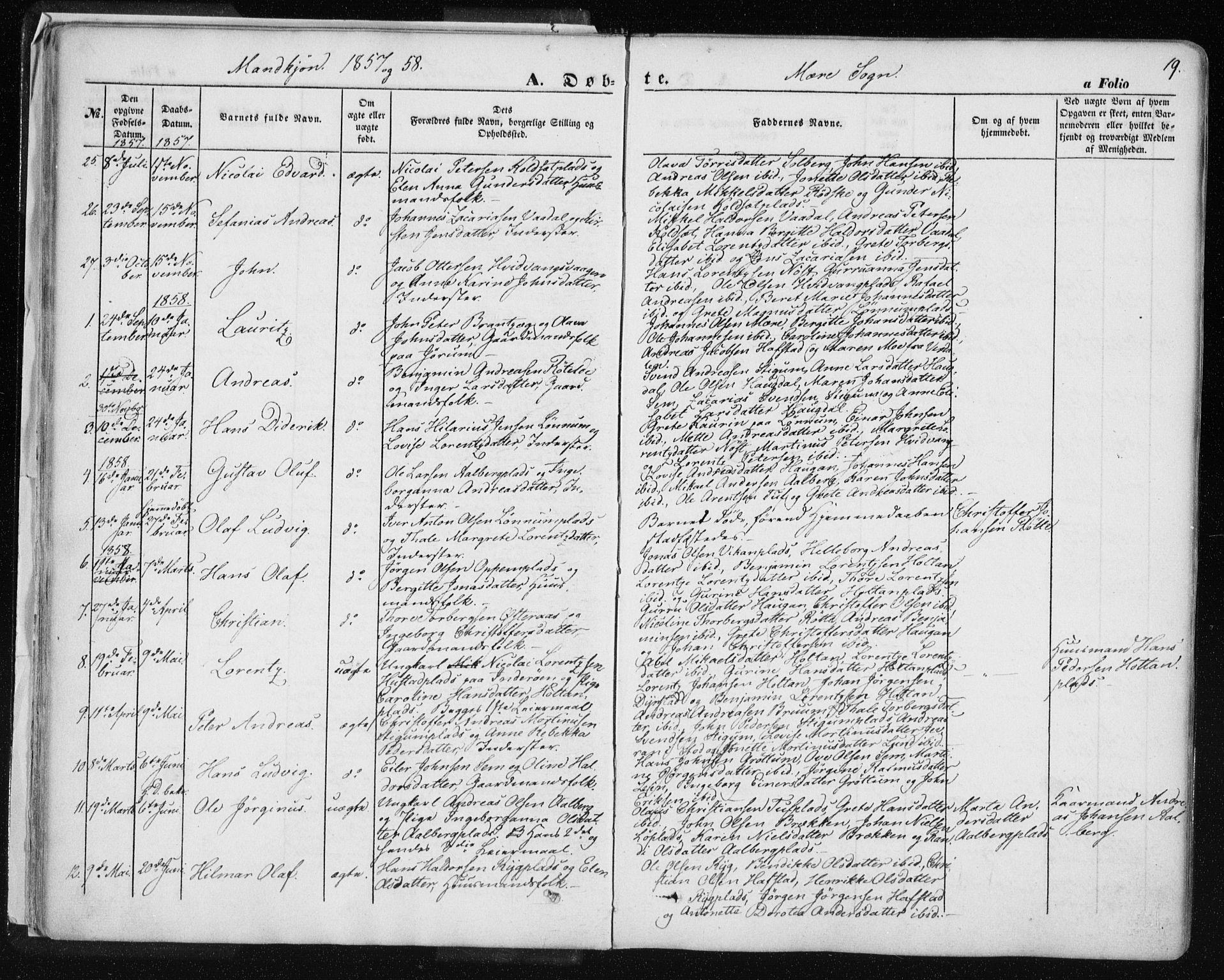SAT, Ministerialprotokoller, klokkerbøker og fødselsregistre - Nord-Trøndelag, 735/L0342: Ministerialbok nr. 735A07 /1, 1849-1862, s. 19