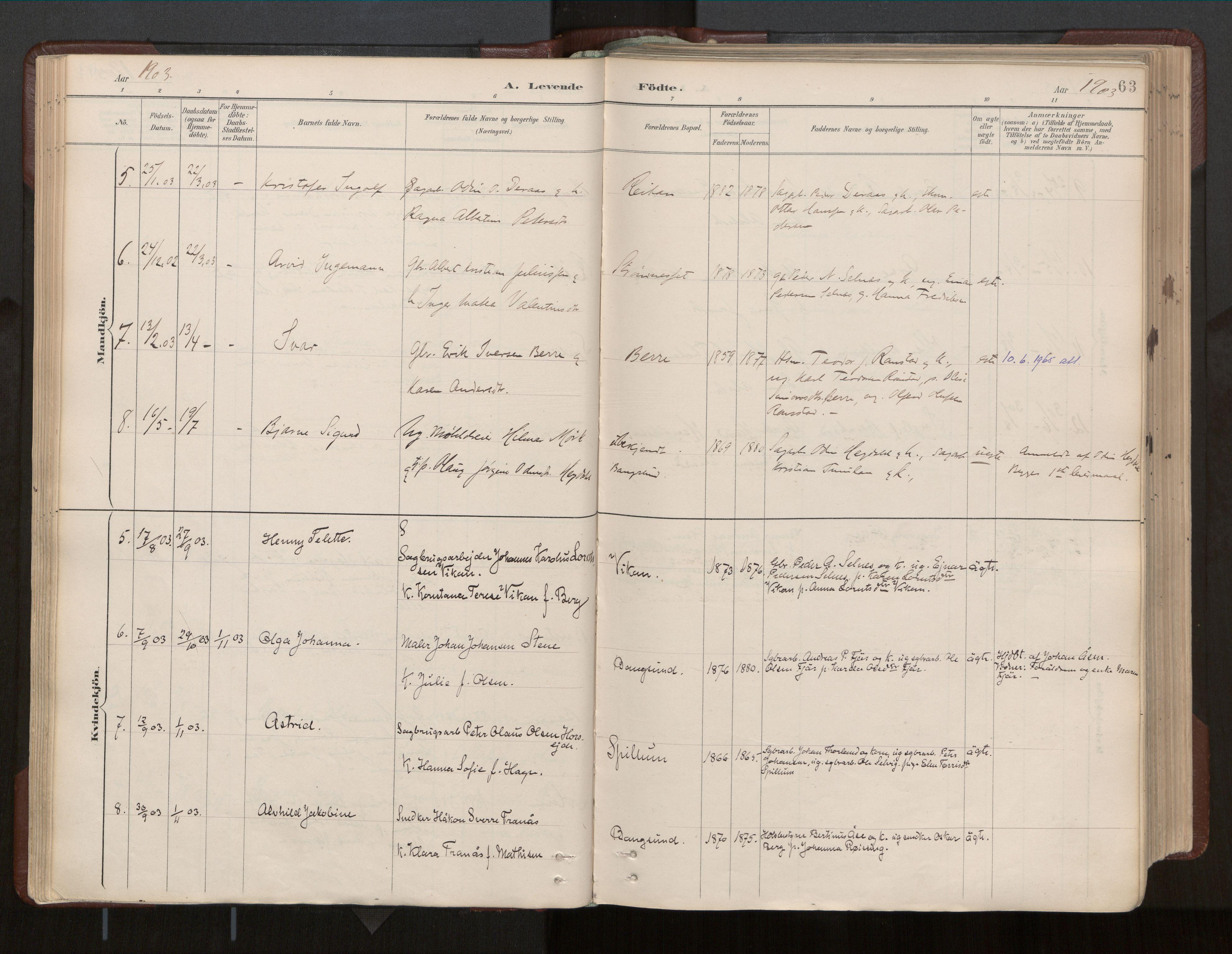 SAT, Ministerialprotokoller, klokkerbøker og fødselsregistre - Nord-Trøndelag, 770/L0589: Ministerialbok nr. 770A03, 1887-1929, s. 63