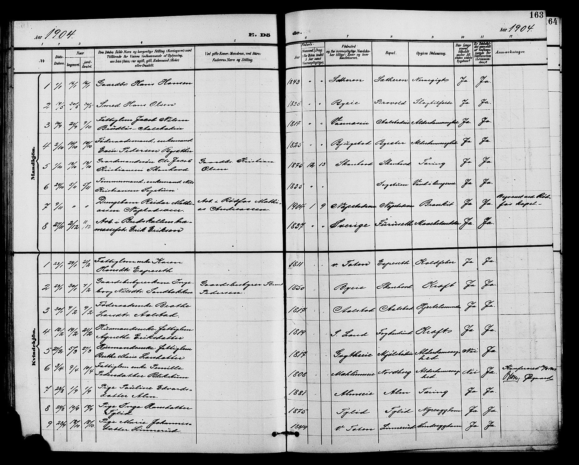 SAH, Vardal prestekontor, H/Ha/Hab/L0011: Klokkerbok nr. 11, 1899-1913, s. 163