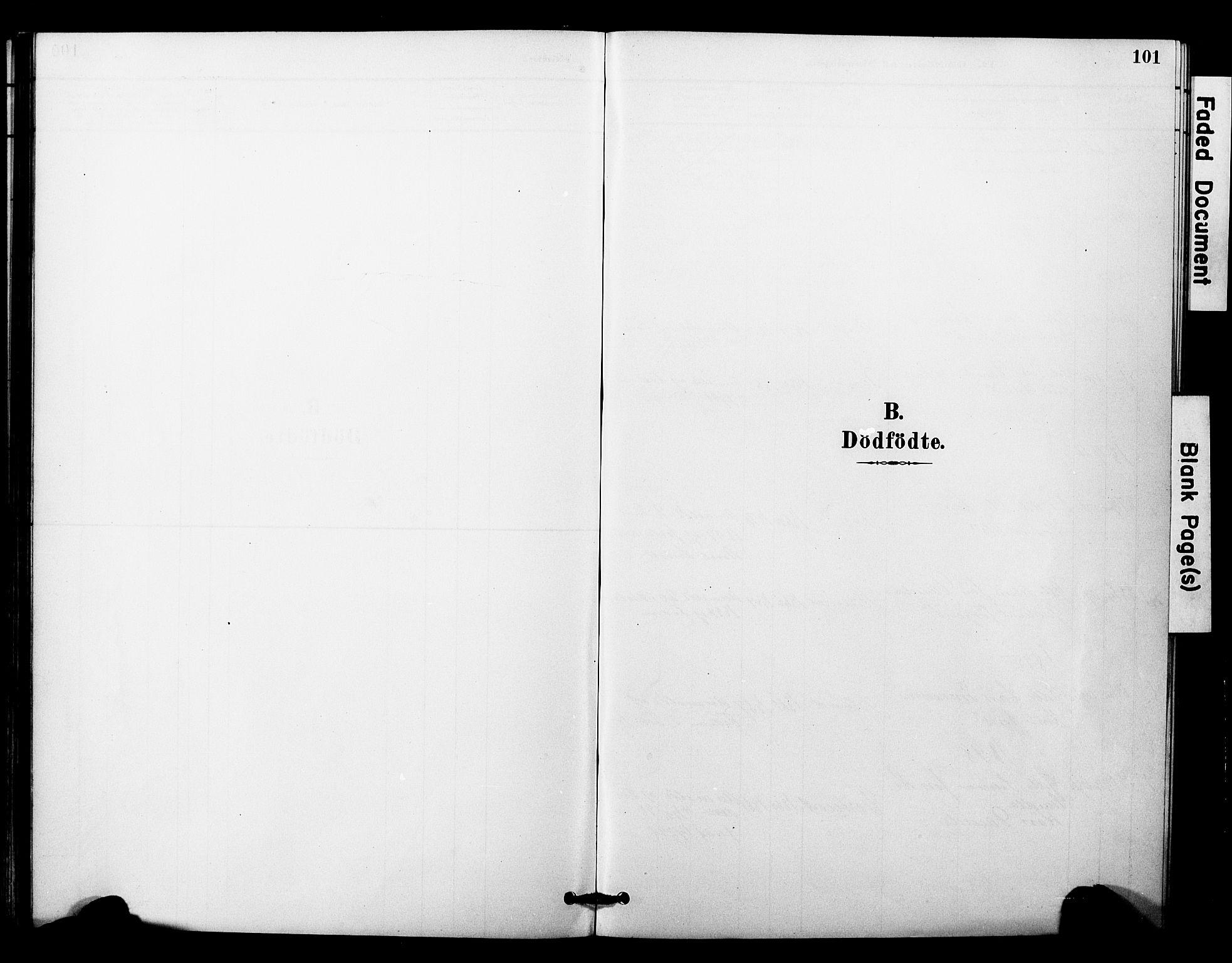 SAT, Ministerialprotokoller, klokkerbøker og fødselsregistre - Nord-Trøndelag, 757/L0505: Ministerialbok nr. 757A01, 1882-1904, s. 101