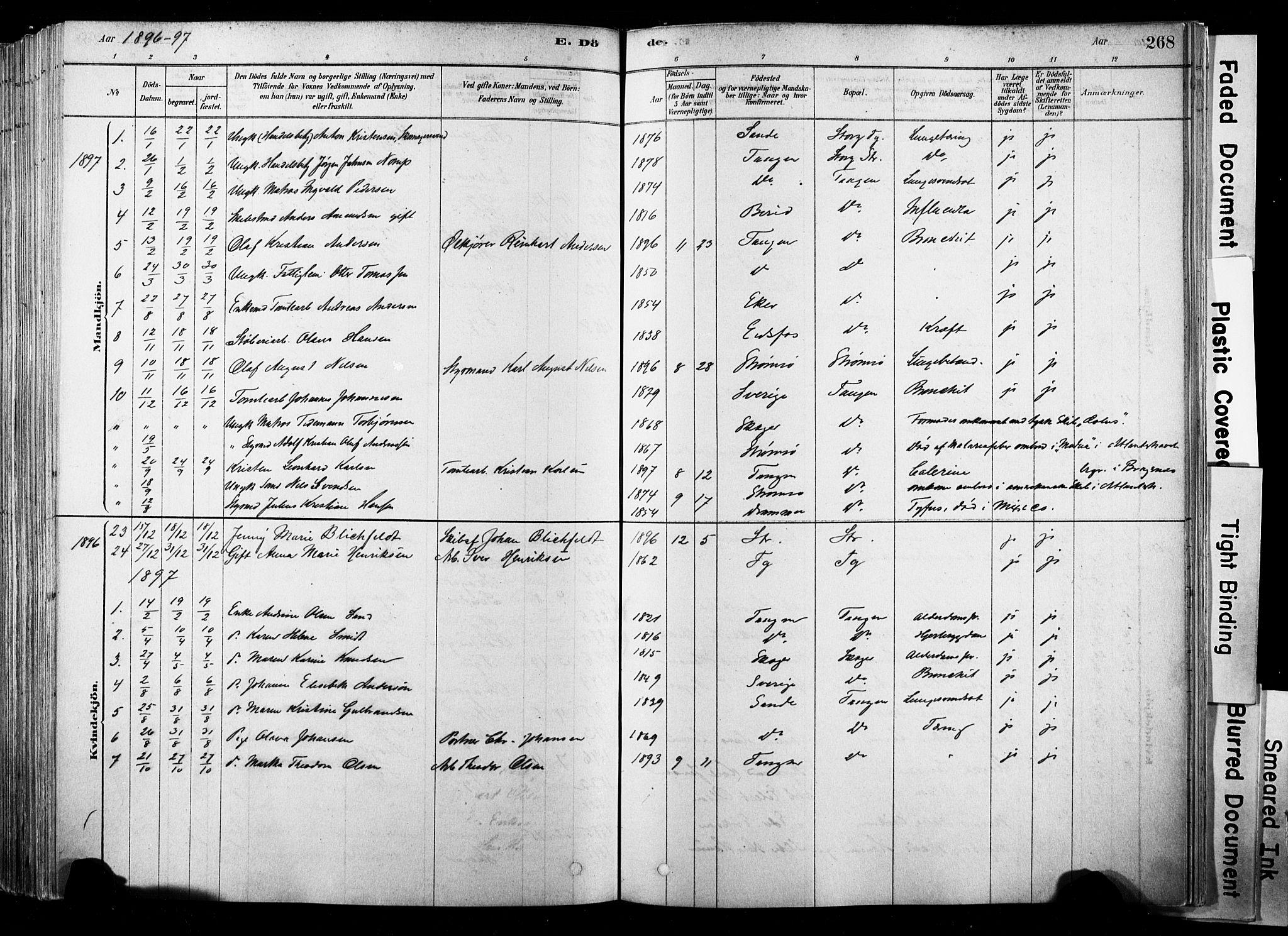 SAKO, Strømsø kirkebøker, F/Fb/L0006: Ministerialbok nr. II 6, 1879-1910, s. 268