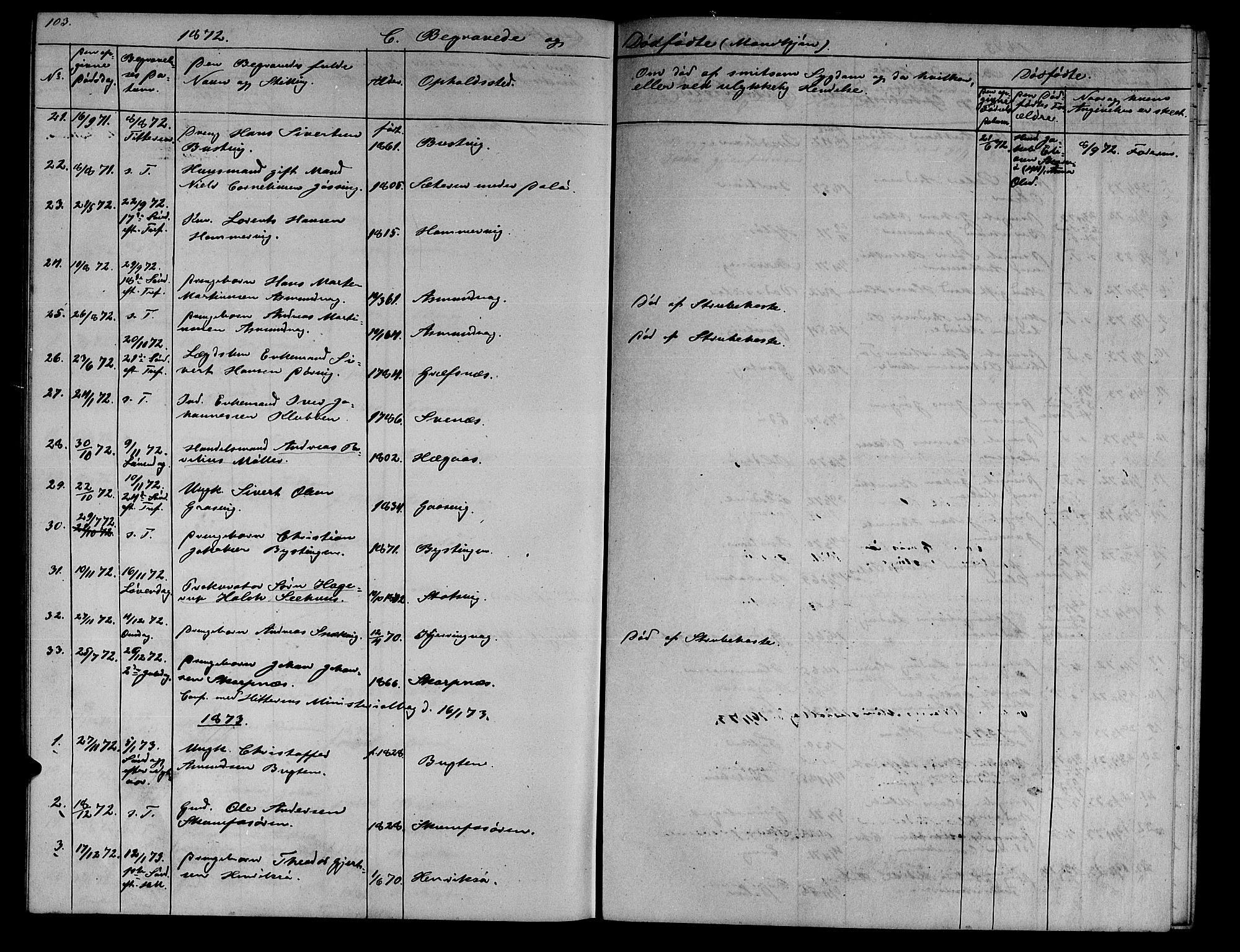 SAT, Ministerialprotokoller, klokkerbøker og fødselsregistre - Sør-Trøndelag, 634/L0539: Klokkerbok nr. 634C01, 1866-1873, s. 103