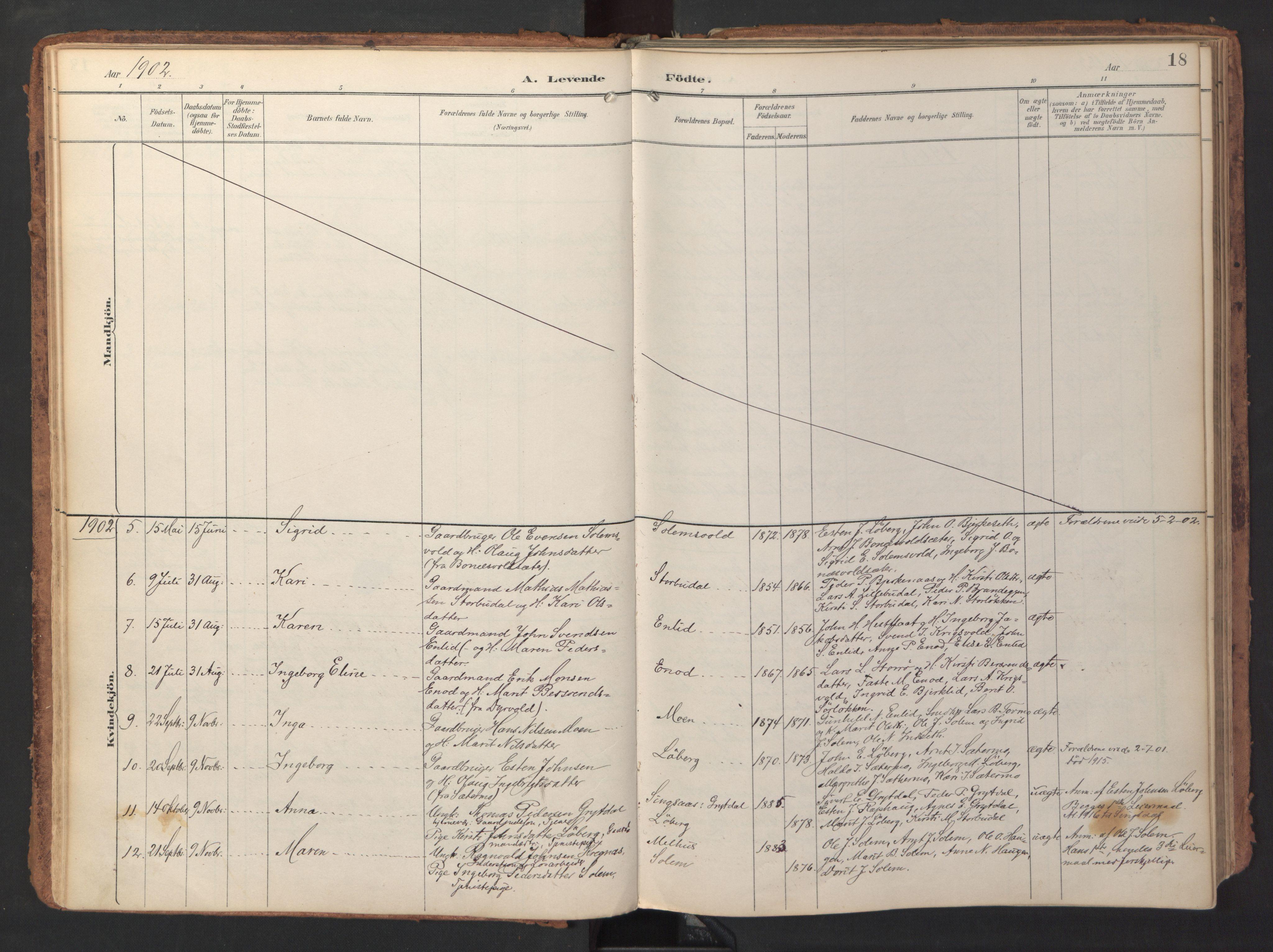 SAT, Ministerialprotokoller, klokkerbøker og fødselsregistre - Sør-Trøndelag, 690/L1050: Ministerialbok nr. 690A01, 1889-1929, s. 18