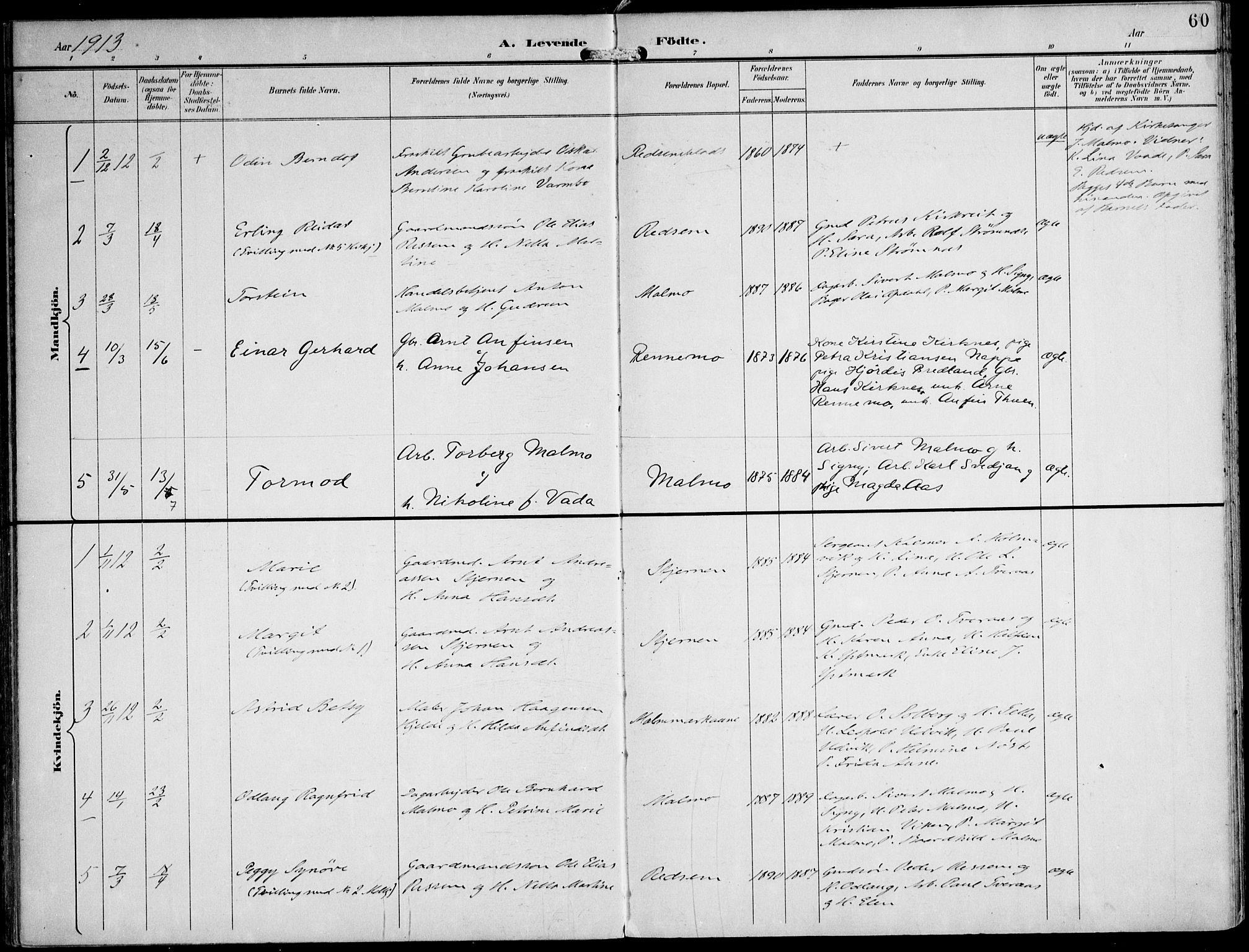 SAT, Ministerialprotokoller, klokkerbøker og fødselsregistre - Nord-Trøndelag, 745/L0430: Ministerialbok nr. 745A02, 1895-1913, s. 60