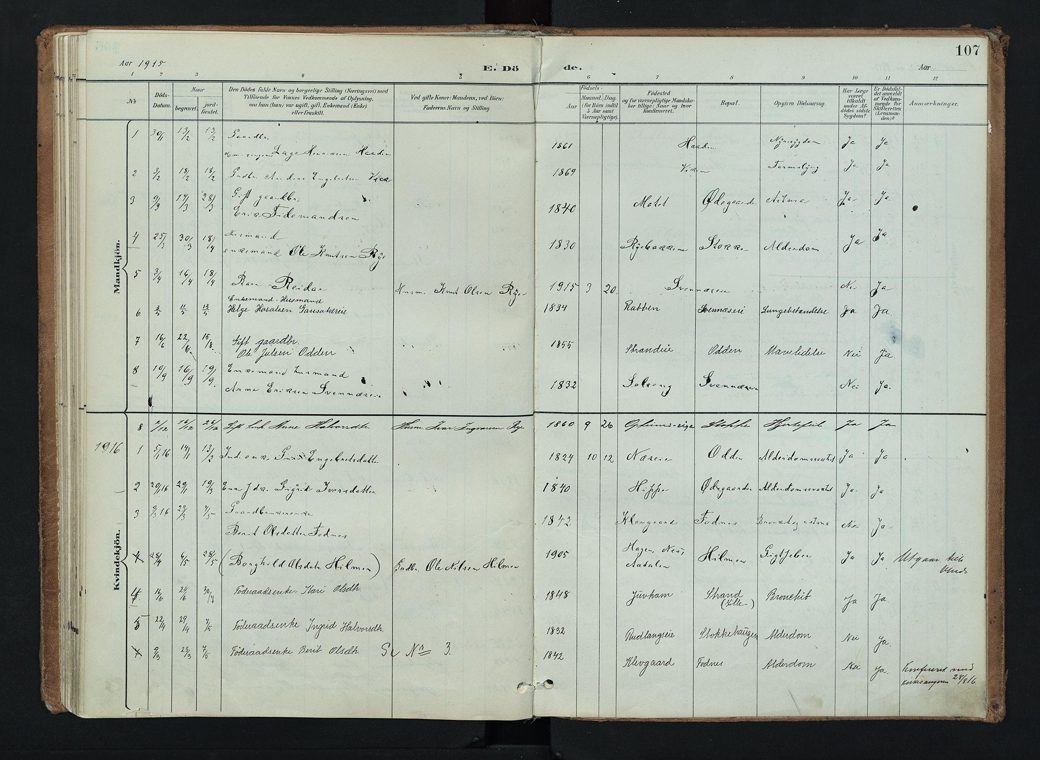 SAH, Nord-Aurdal prestekontor, Ministerialbok nr. 16, 1897-1925, s. 107