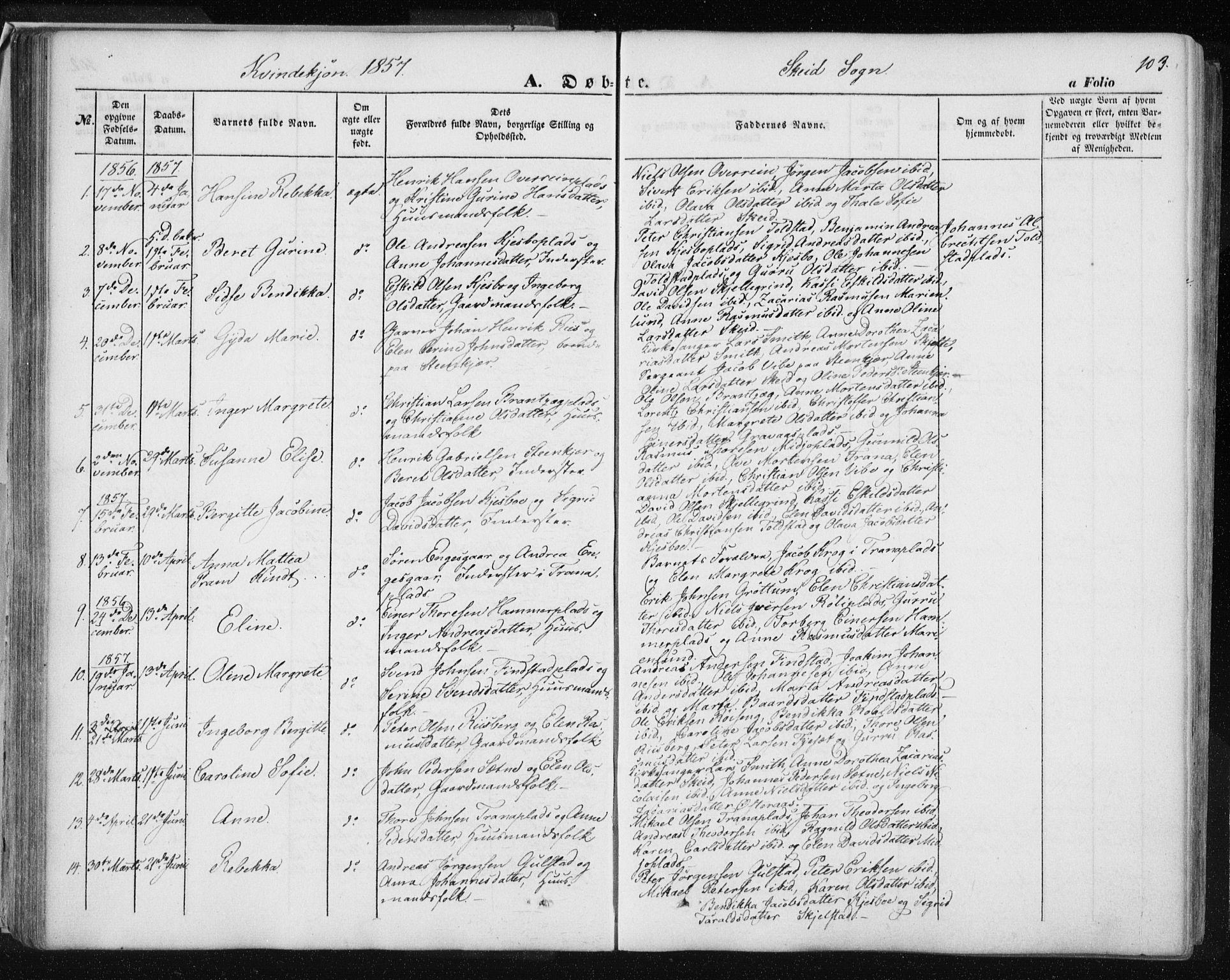 SAT, Ministerialprotokoller, klokkerbøker og fødselsregistre - Nord-Trøndelag, 735/L0342: Ministerialbok nr. 735A07 /2, 1849-1862, s. 103