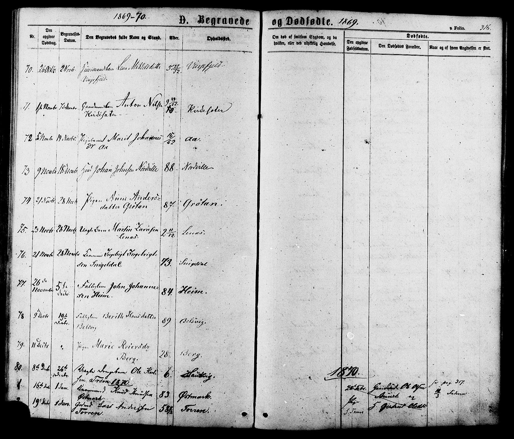 SAT, Ministerialprotokoller, klokkerbøker og fødselsregistre - Sør-Trøndelag, 630/L0495: Ministerialbok nr. 630A08, 1868-1878, s. 316