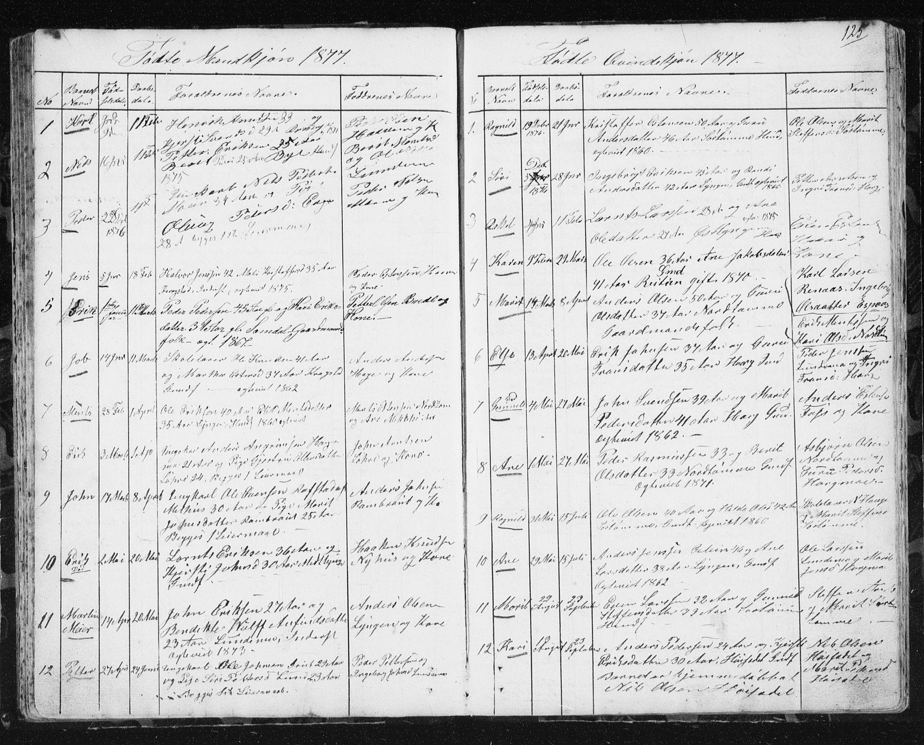 SAT, Ministerialprotokoller, klokkerbøker og fødselsregistre - Sør-Trøndelag, 692/L1110: Klokkerbok nr. 692C05, 1849-1889, s. 125
