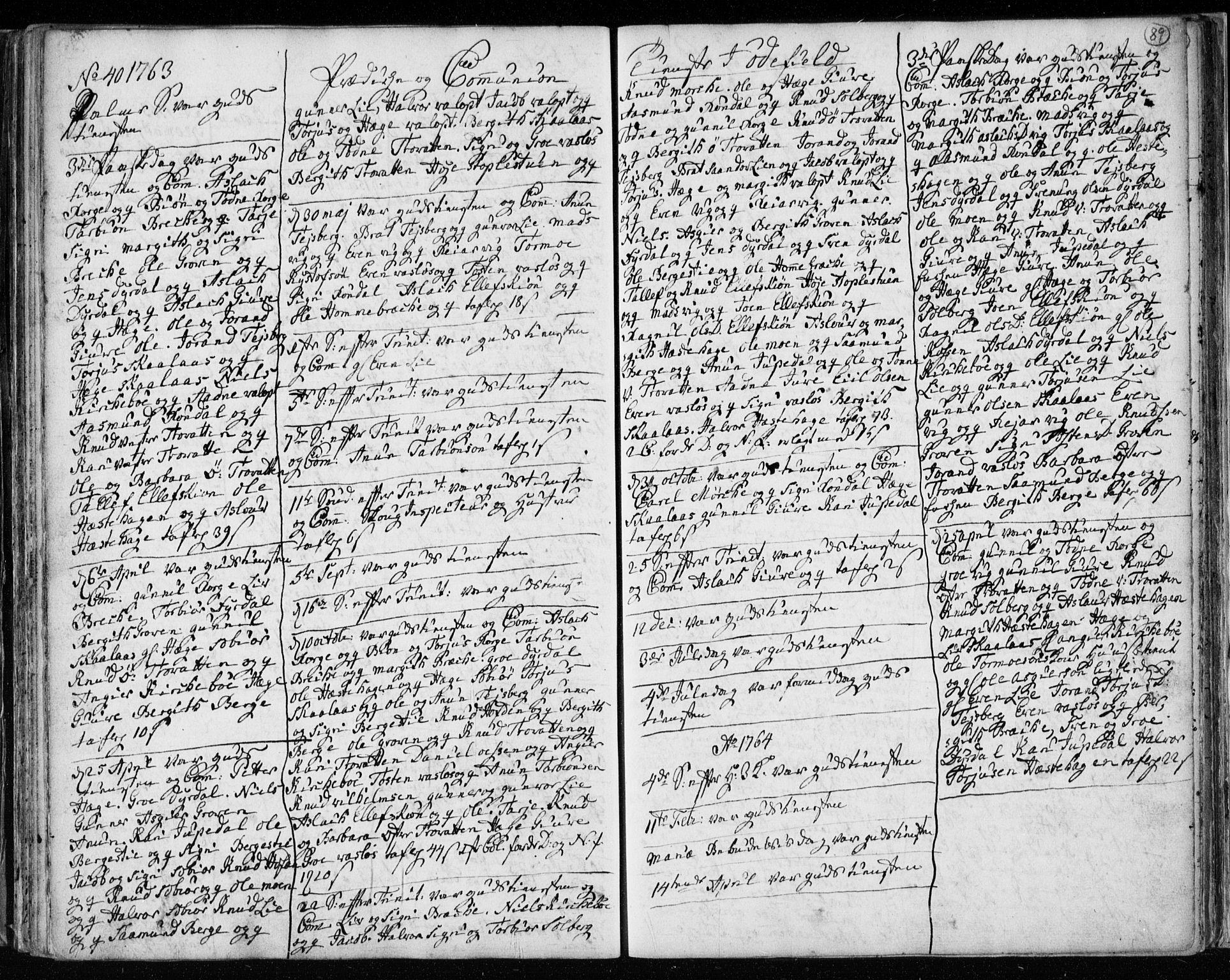 SAKO, Lårdal kirkebøker, F/Fa/L0003: Ministerialbok nr. I 3, 1754-1790, s. 89