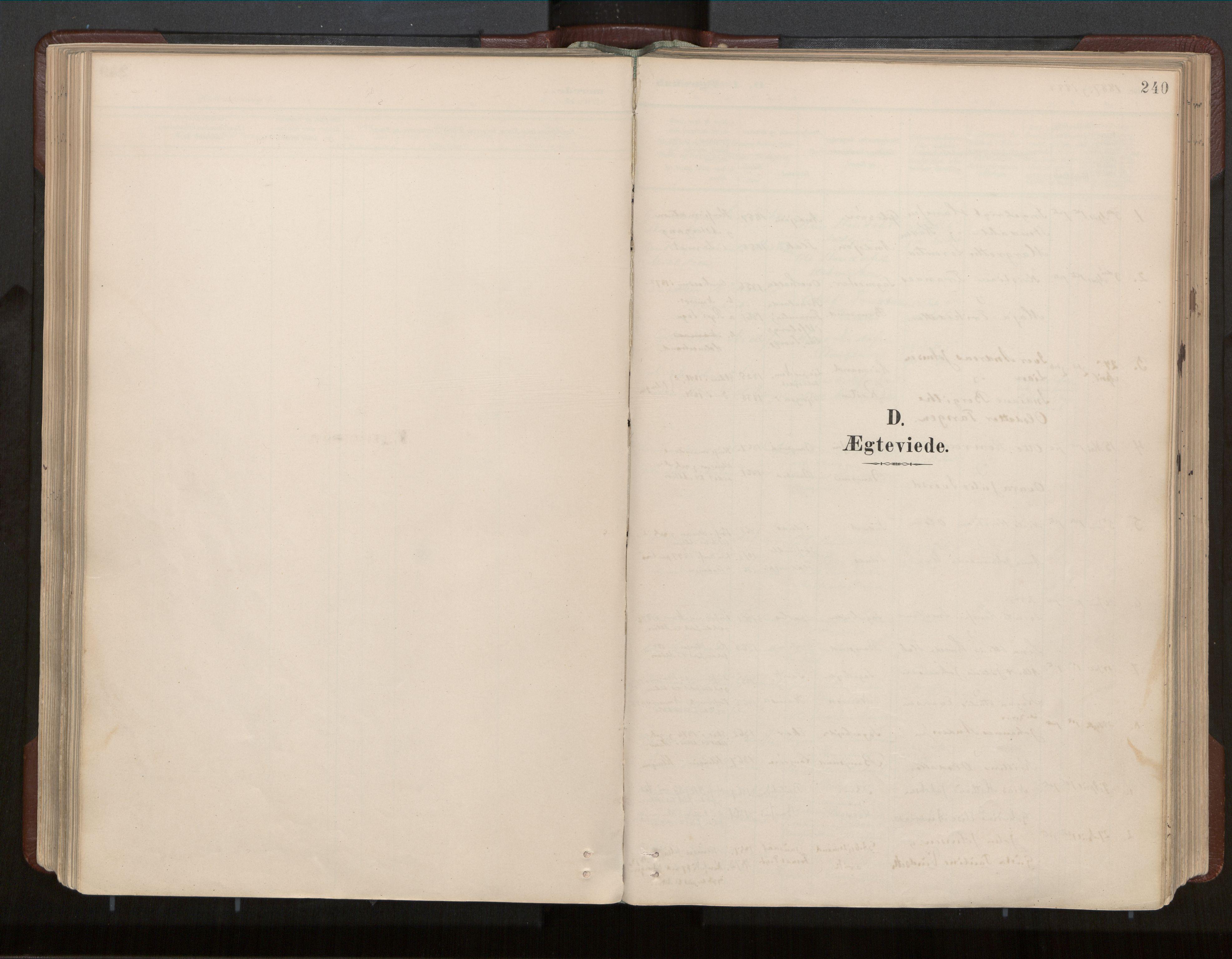 SAT, Ministerialprotokoller, klokkerbøker og fødselsregistre - Nord-Trøndelag, 770/L0589: Ministerialbok nr. 770A03, 1887-1929, s. 240