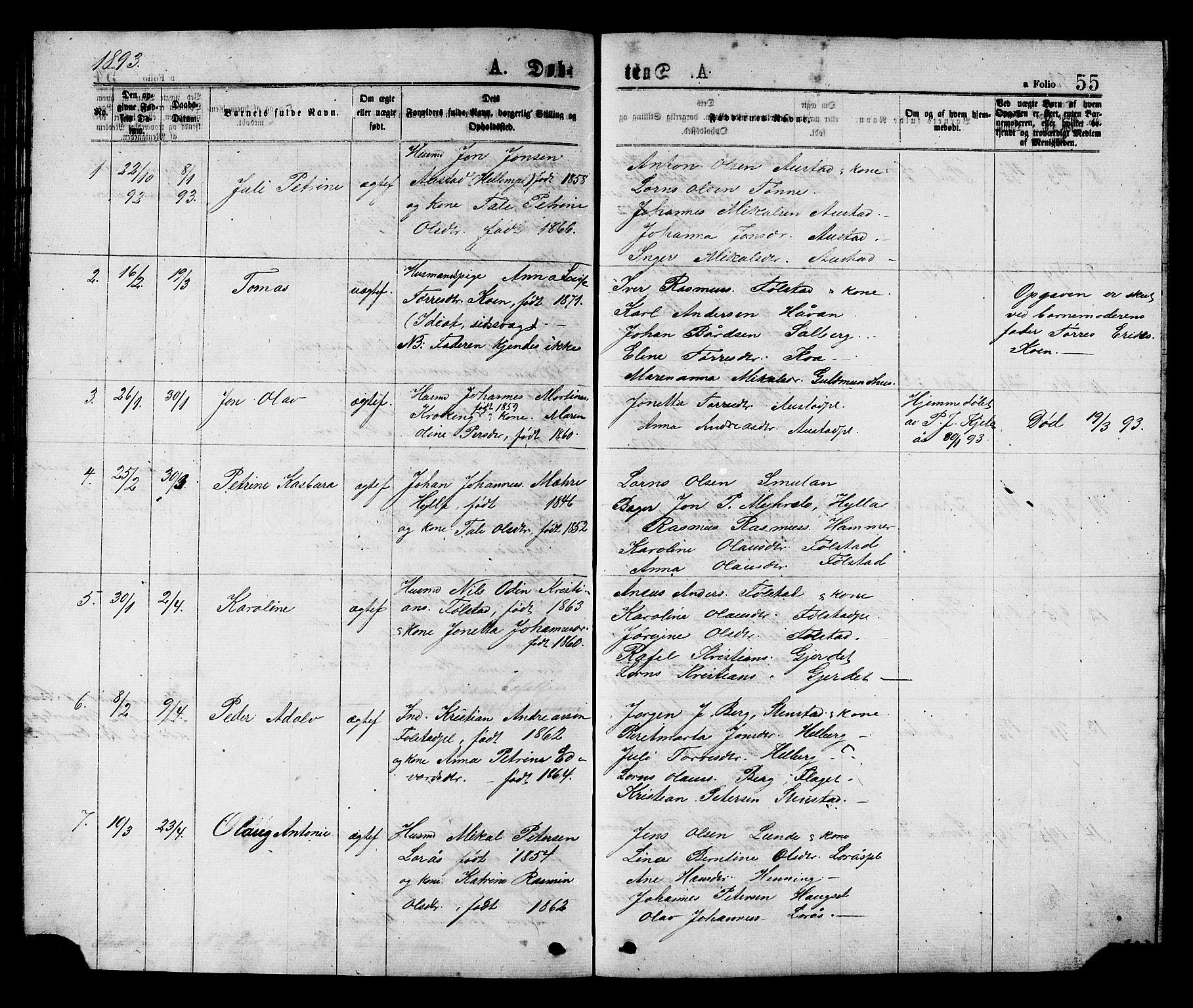 SAT, Ministerialprotokoller, klokkerbøker og fødselsregistre - Nord-Trøndelag, 731/L0311: Klokkerbok nr. 731C02, 1875-1911, s. 55