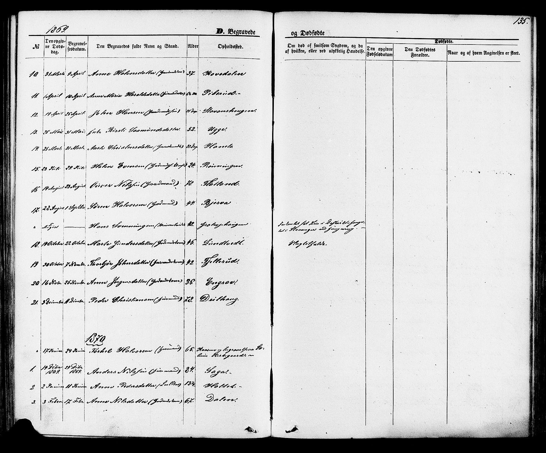 SAKO, Lunde kirkebøker, F/Fa/L0001: Ministerialbok nr. I 1, 1866-1883, s. 135