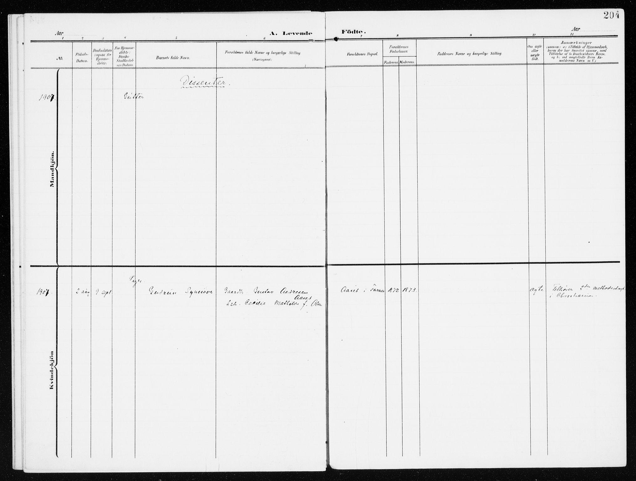 SAH, Furnes prestekontor, K/Ka/L0001: Ministerialbok nr. 1, 1907-1935, s. 204