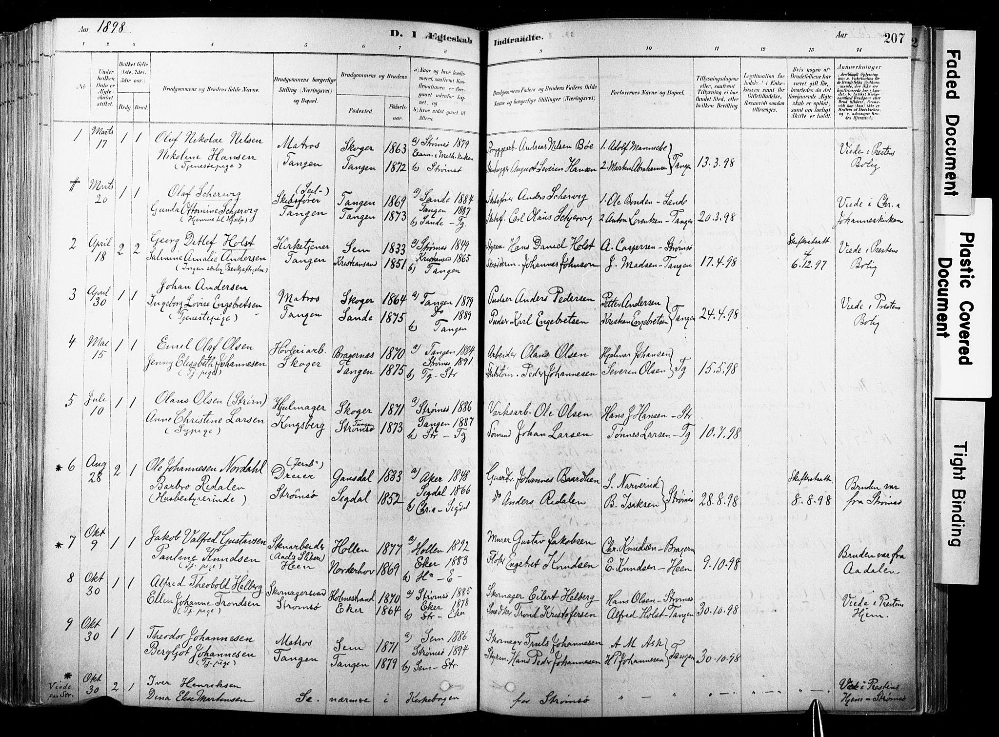 SAKO, Strømsø kirkebøker, F/Fb/L0006: Ministerialbok nr. II 6, 1879-1910, s. 207