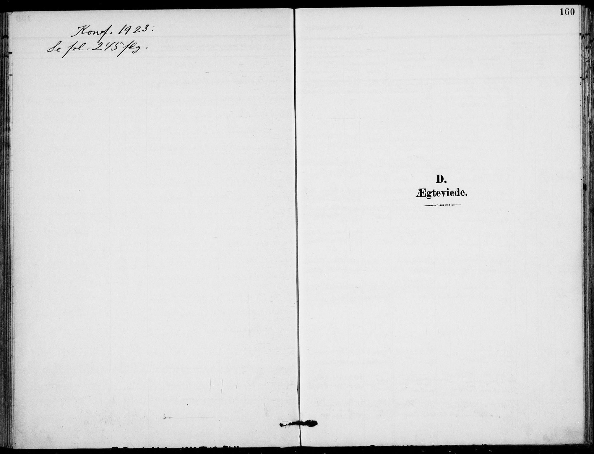 SAKO, Holla kirkebøker, F/Fa/L0012: Ministerialbok nr. 12, 1907-1923, s. 160