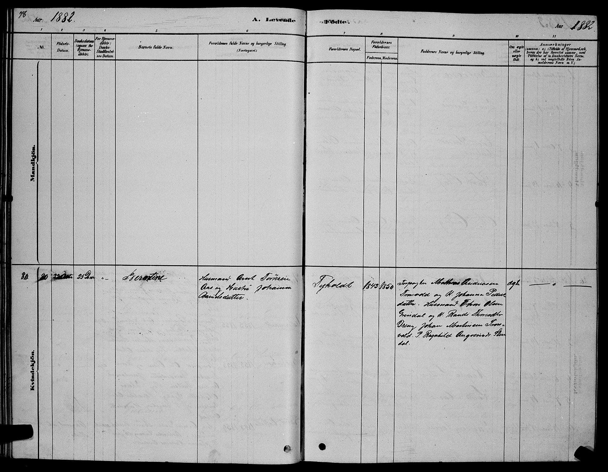 SAT, Ministerialprotokoller, klokkerbøker og fødselsregistre - Sør-Trøndelag, 606/L0312: Klokkerbok nr. 606C08, 1878-1894, s. 78