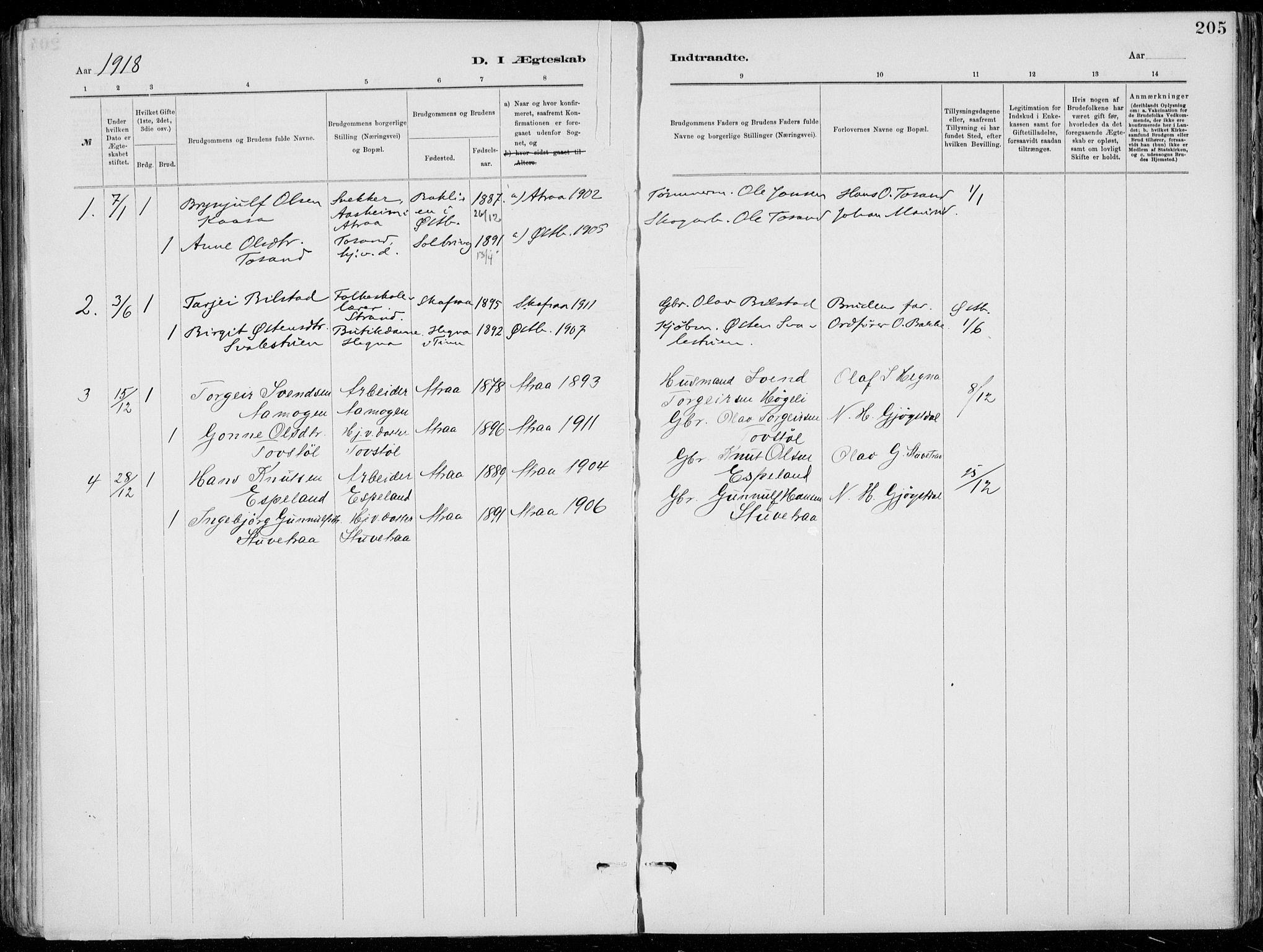SAKO, Tinn kirkebøker, F/Fa/L0007: Ministerialbok nr. I 7, 1878-1922, s. 205
