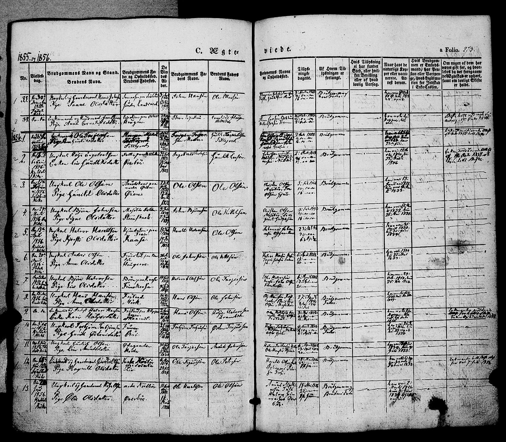 SAKO, Hjartdal kirkebøker, F/Fa/L0008: Ministerialbok nr. I 8, 1844-1859, s. 273