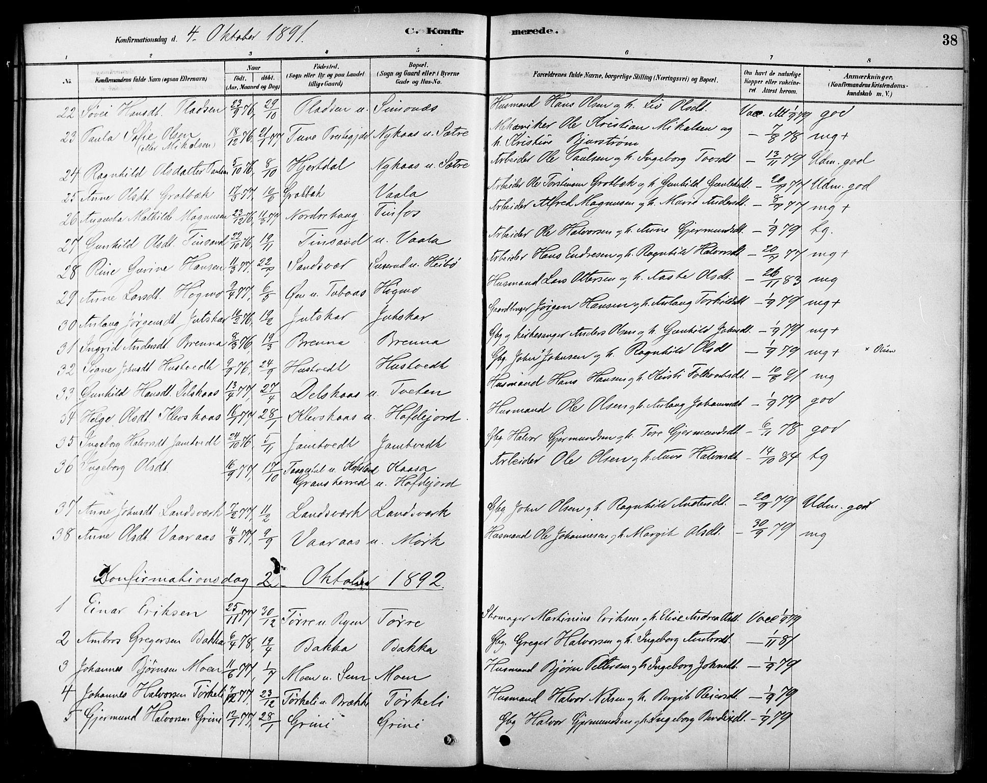 SAKO, Heddal kirkebøker, F/Fa/L0009: Ministerialbok nr. I 9, 1878-1903, s. 38