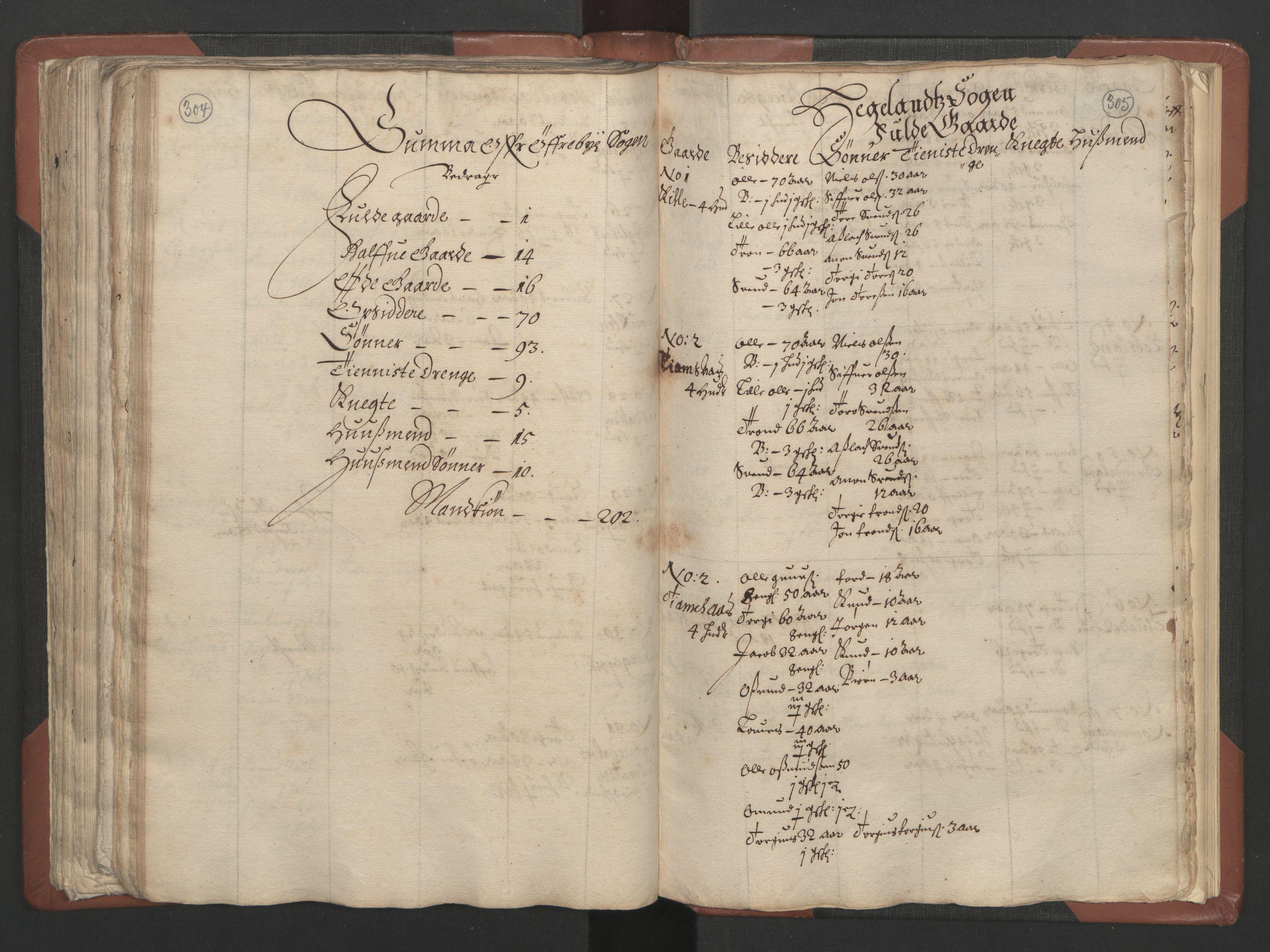 RA, Fogdenes og sorenskrivernes manntall 1664-1666, nr. 9: Mandal len, 1664-1666, s. 304-305