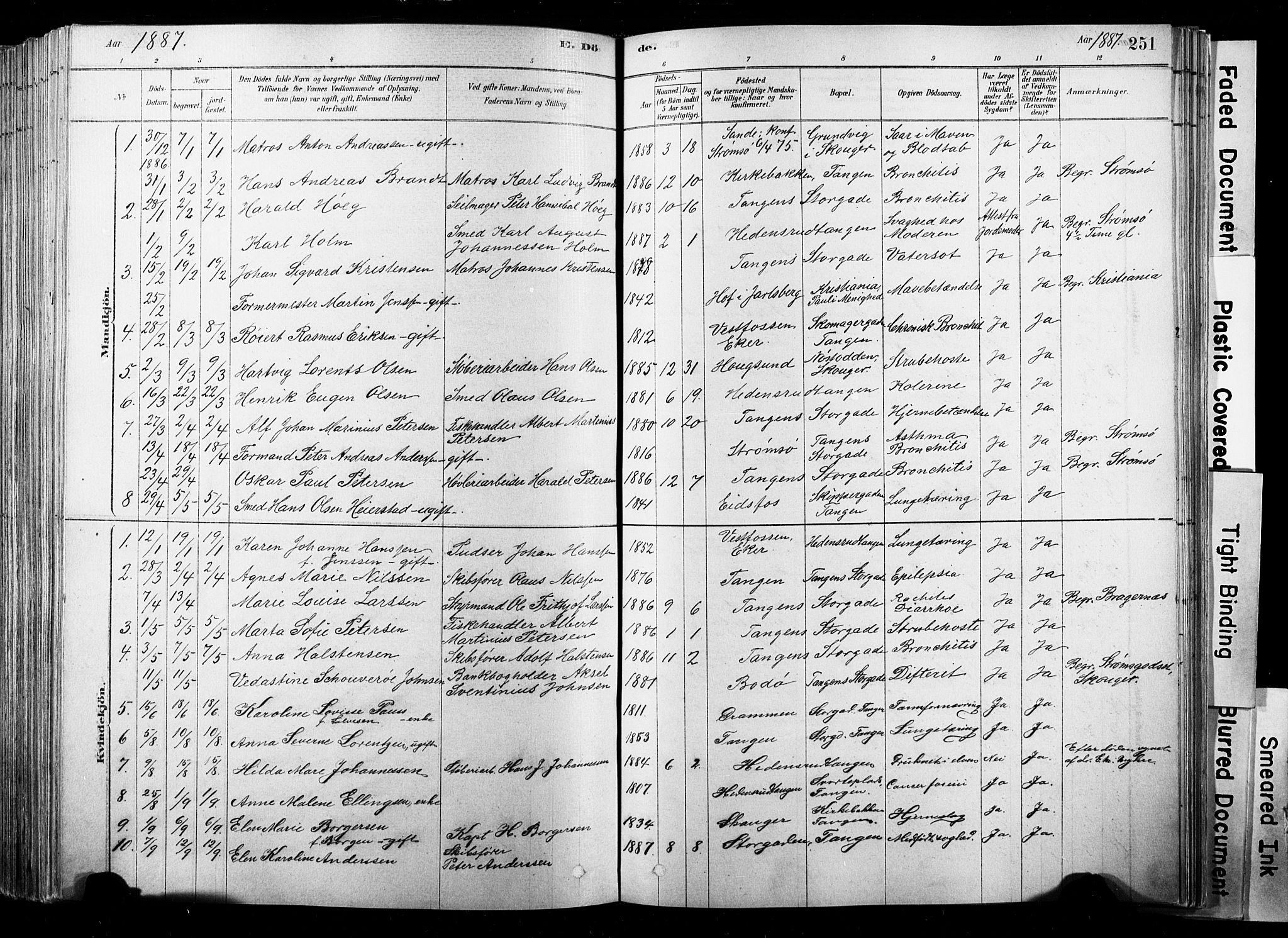 SAKO, Strømsø kirkebøker, F/Fb/L0006: Ministerialbok nr. II 6, 1879-1910, s. 251
