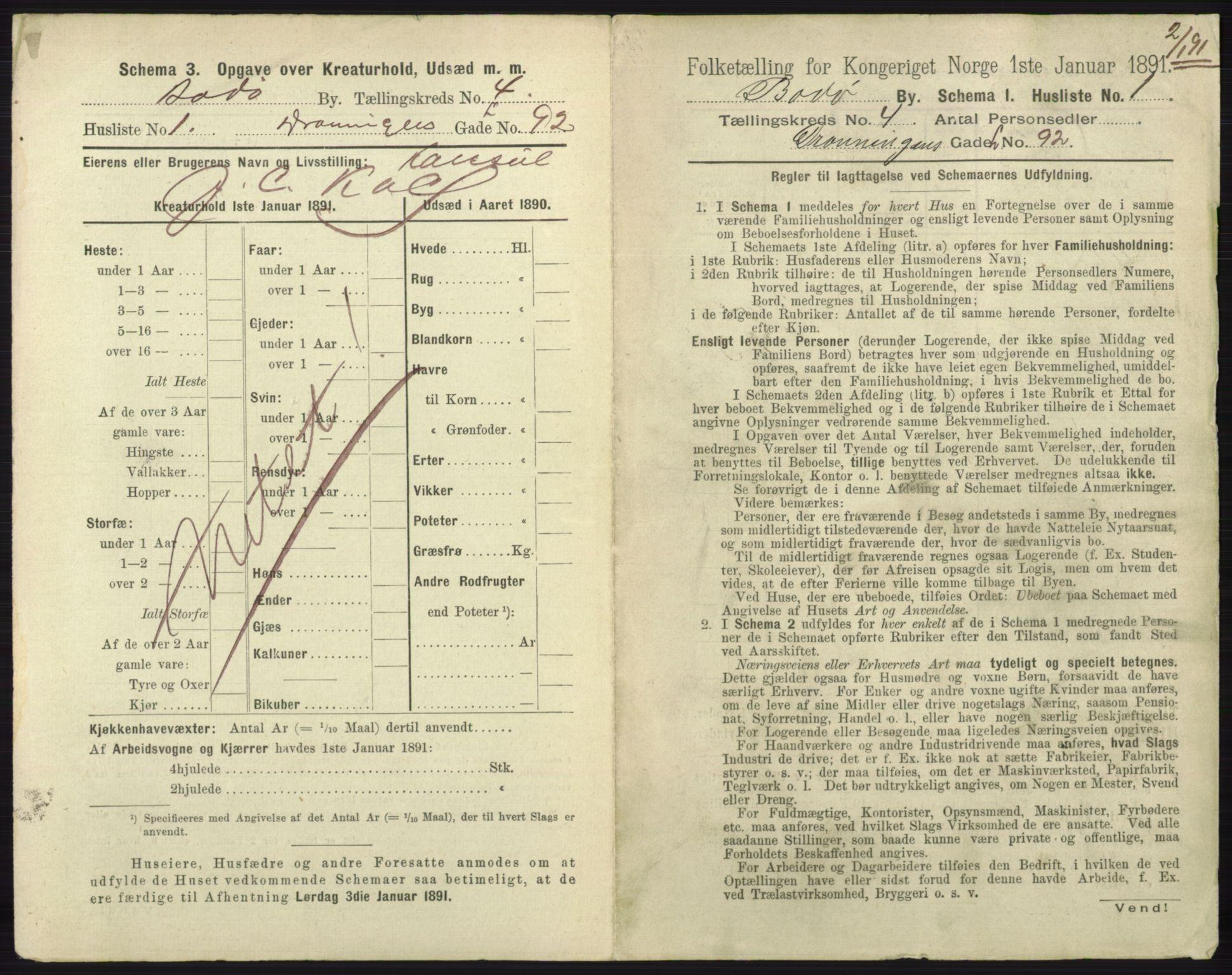 RA, Folketelling 1891 for 1804 Bodø kjøpstad, 1891, s. 2889