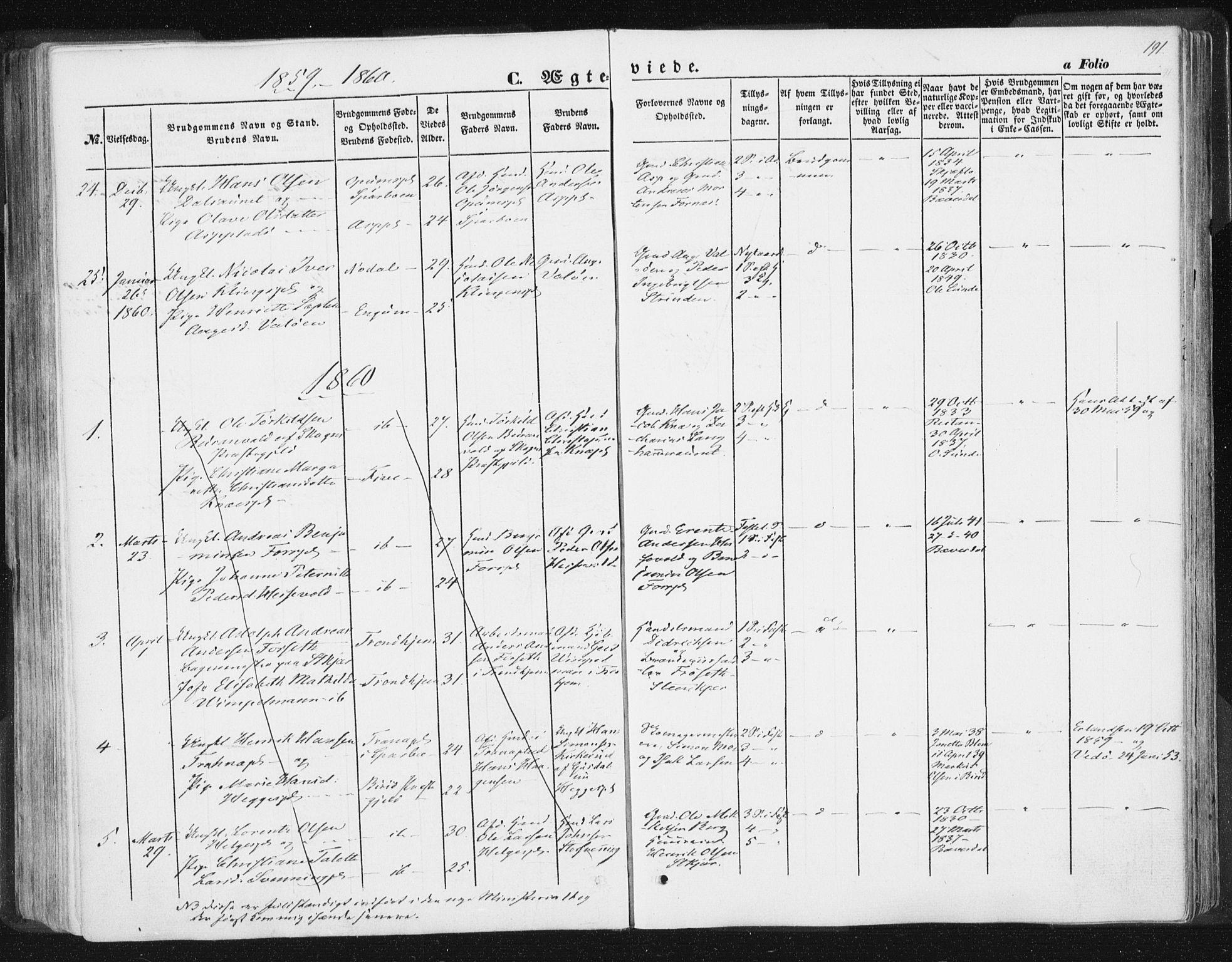 SAT, Ministerialprotokoller, klokkerbøker og fødselsregistre - Nord-Trøndelag, 746/L0446: Ministerialbok nr. 746A05, 1846-1859, s. 191
