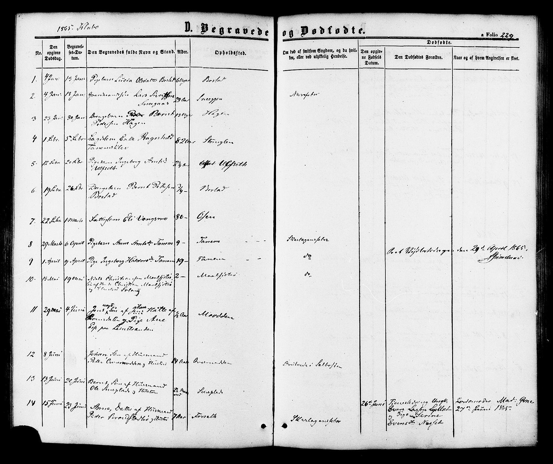 SAT, Ministerialprotokoller, klokkerbøker og fødselsregistre - Sør-Trøndelag, 618/L0442: Ministerialbok nr. 618A06 /1, 1863-1879, s. 229