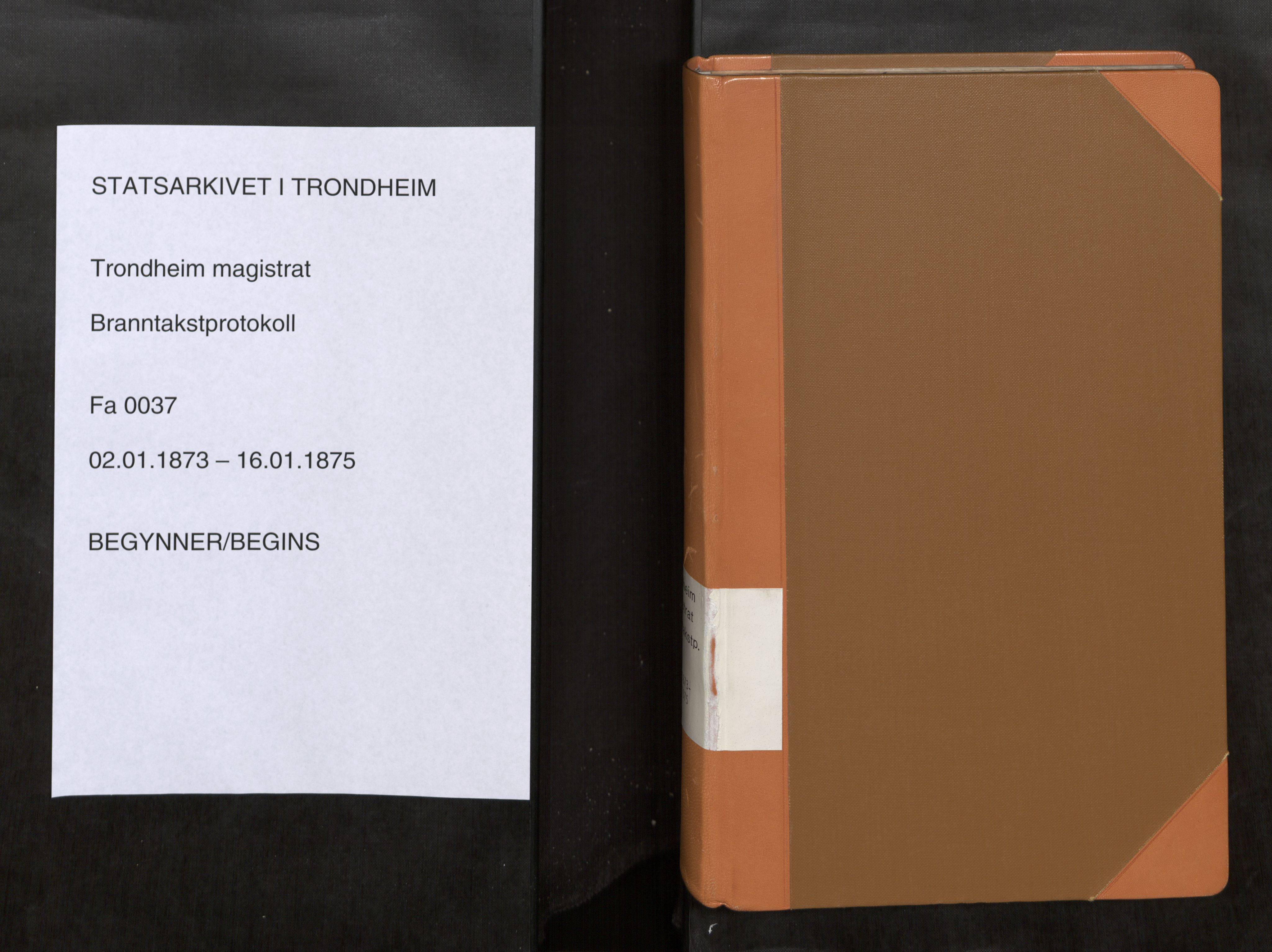 SAT, Norges Brannkasse Trondheim magistrat, Branntakstprotokoller med tekst, nr. 37: 1873-1875, 1873-1875
