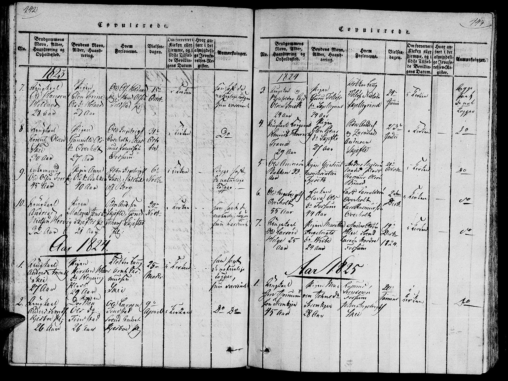 SAT, Ministerialprotokoller, klokkerbøker og fødselsregistre - Nord-Trøndelag, 735/L0333: Ministerialbok nr. 735A04 /2, 1816-1825, s. 442-443