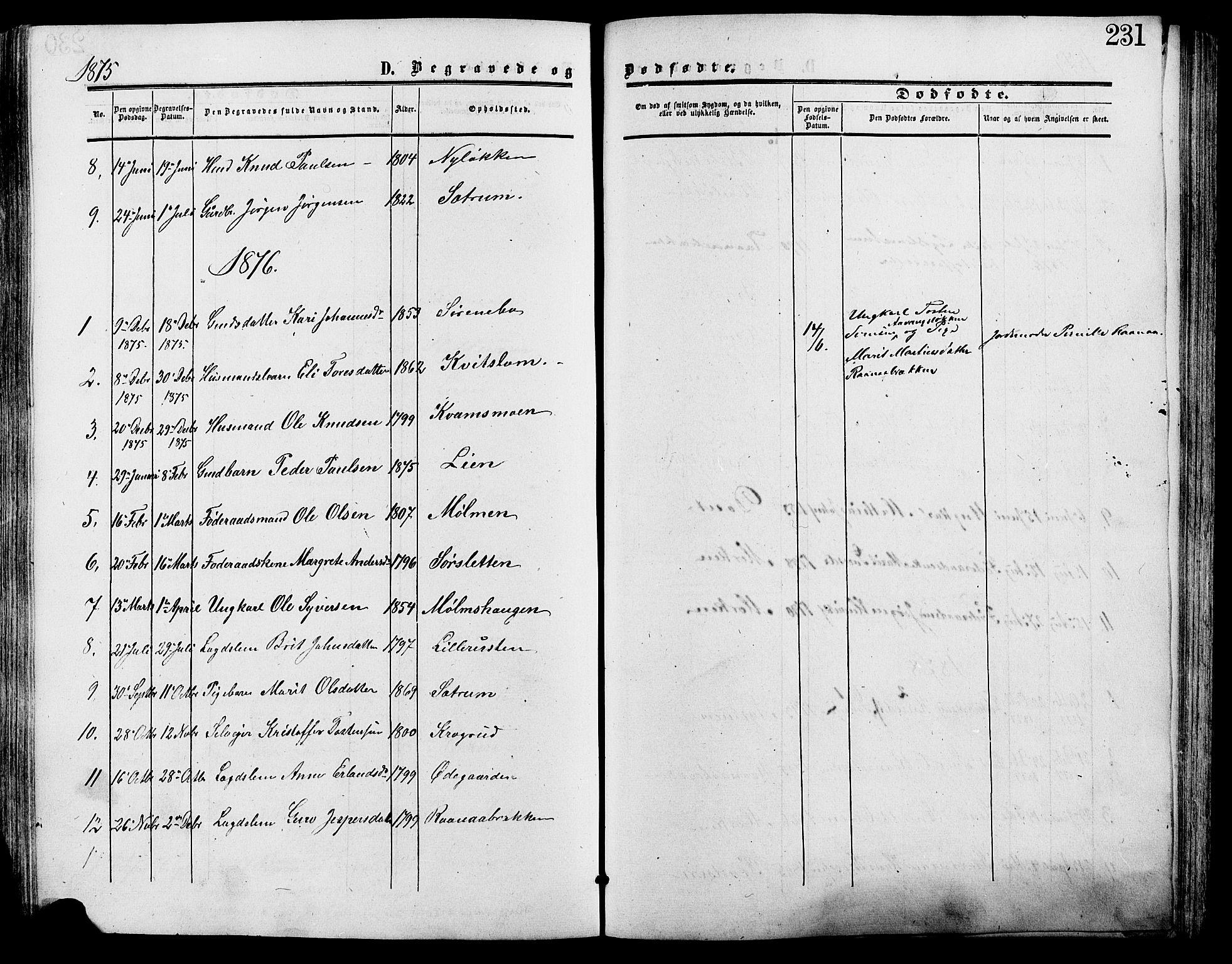 SAH, Lesja prestekontor, Ministerialbok nr. 9, 1854-1889, s. 231