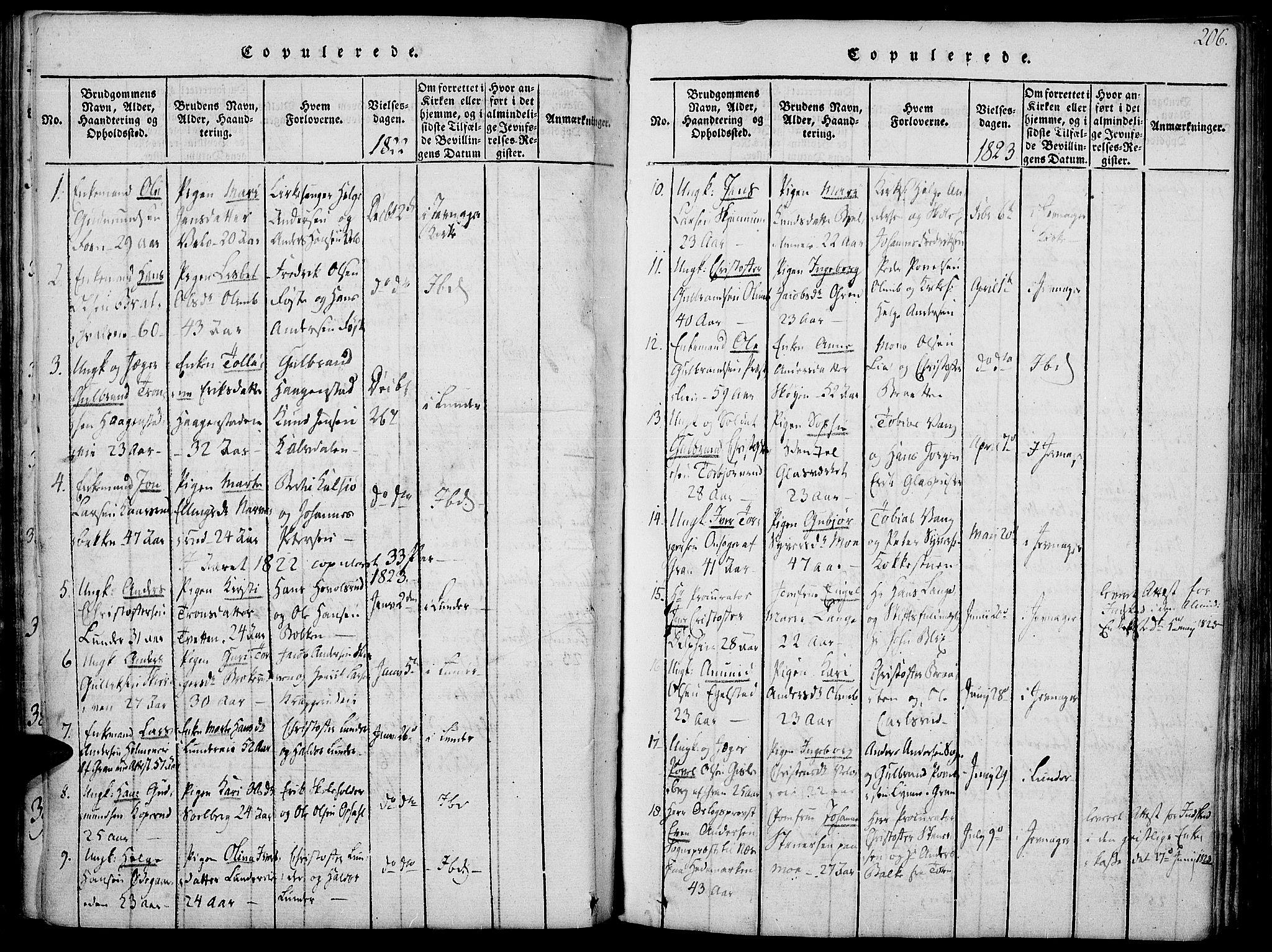 SAH, Jevnaker prestekontor, Ministerialbok nr. 5, 1815-1837, s. 206