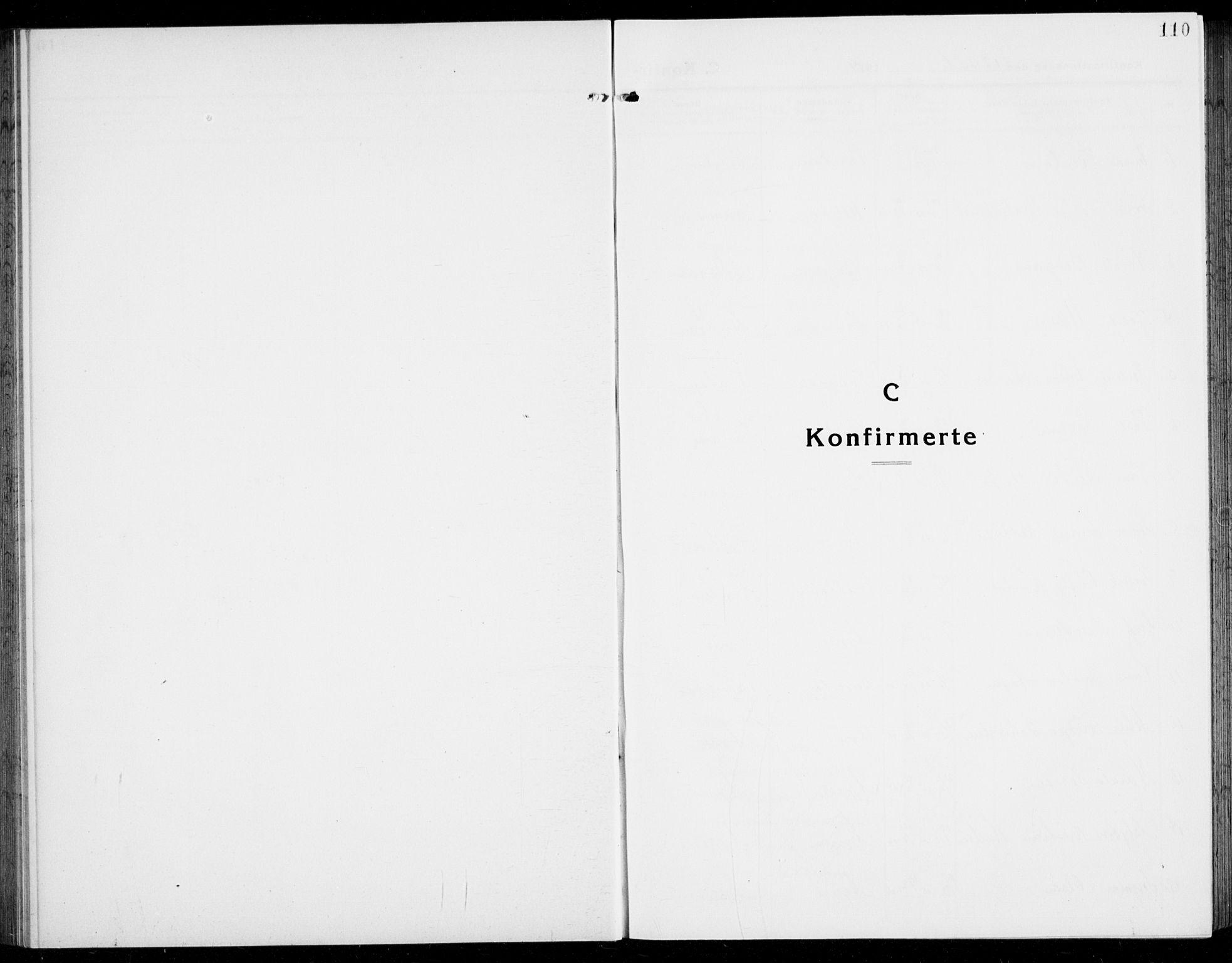 SAKO, Brunlanes kirkebøker, G/Ga/L0005: Klokkerbok nr. I 5, 1918-1941, s. 110