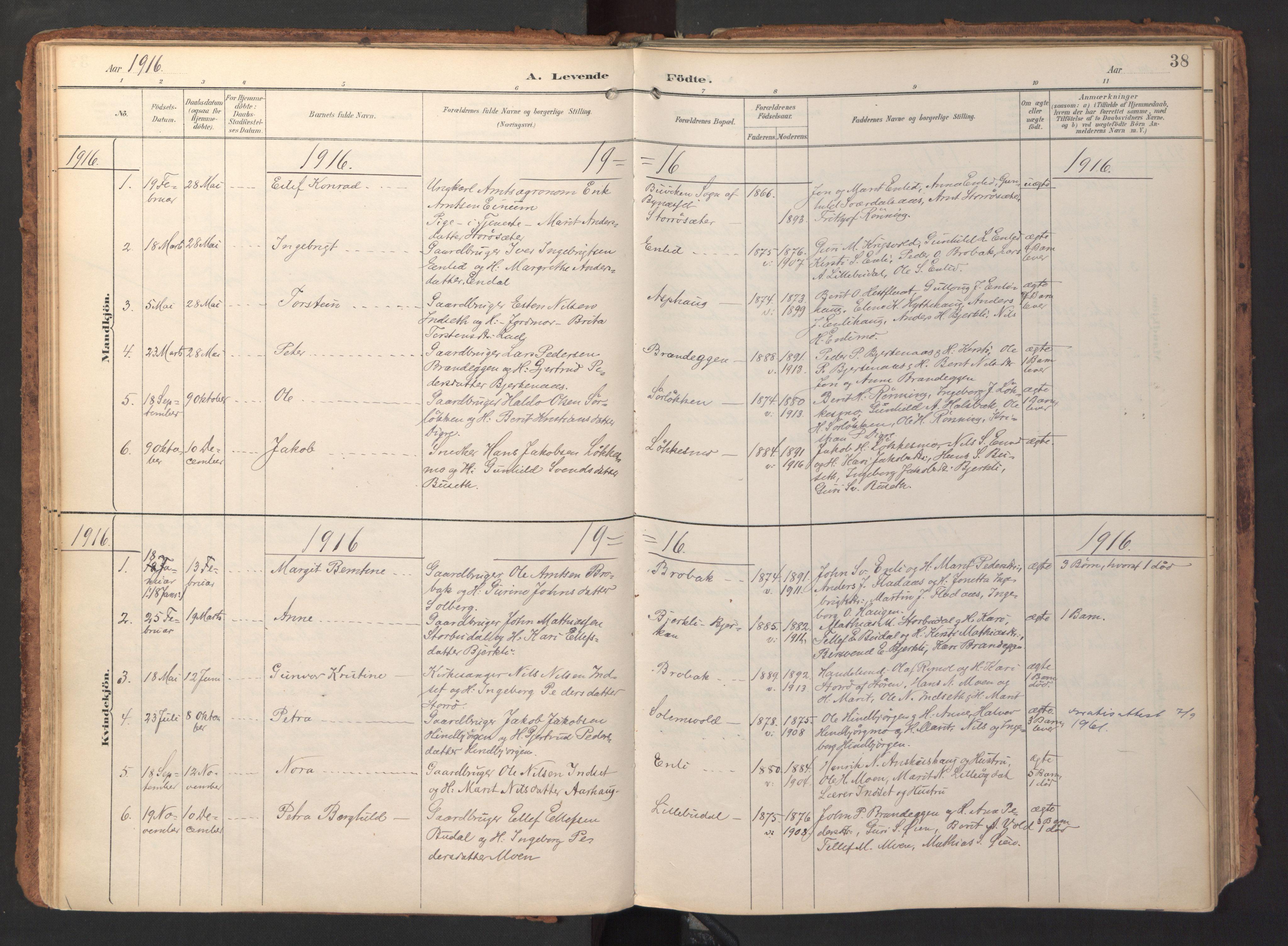 SAT, Ministerialprotokoller, klokkerbøker og fødselsregistre - Sør-Trøndelag, 690/L1050: Ministerialbok nr. 690A01, 1889-1929, s. 38