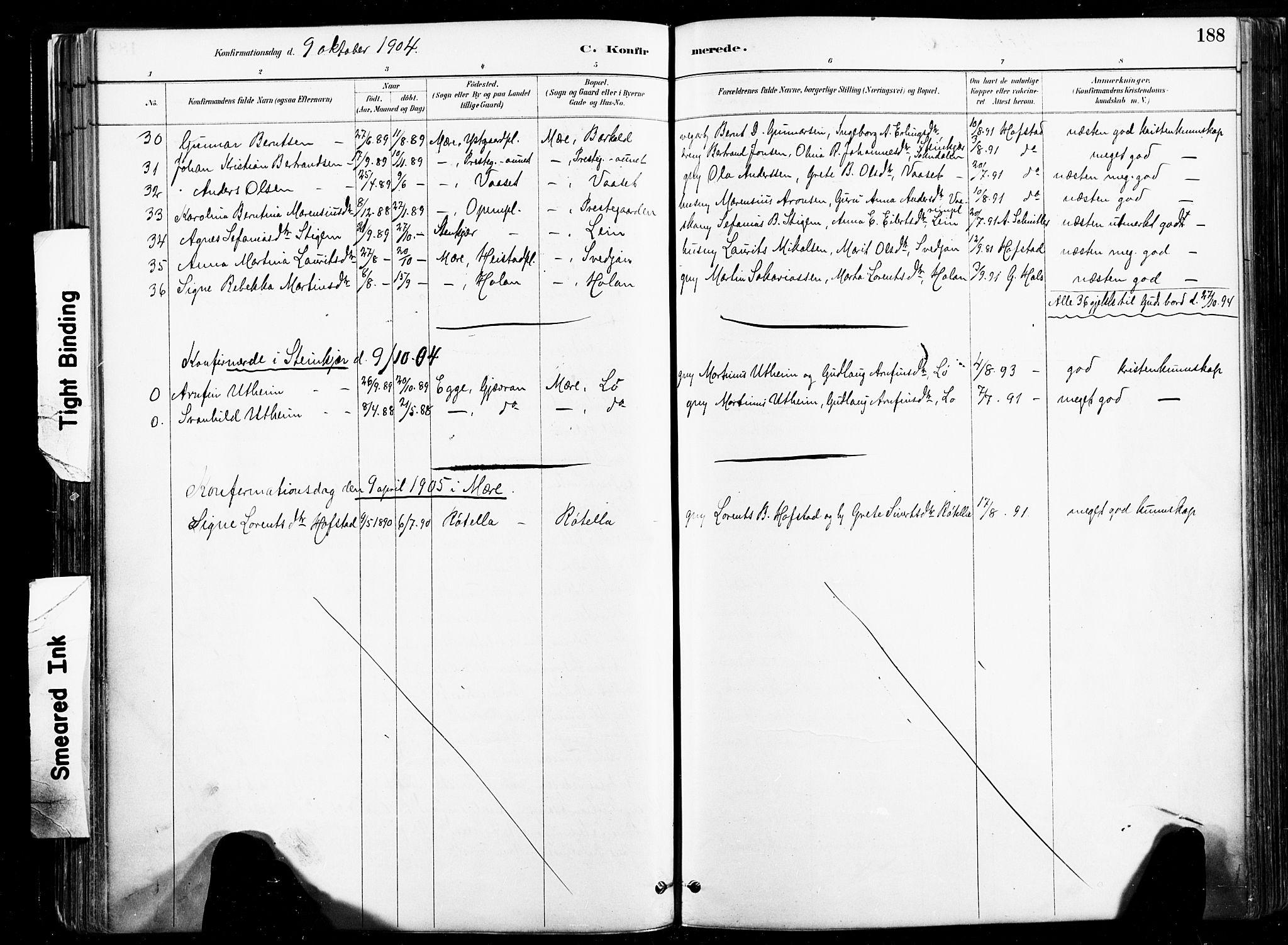 SAT, Ministerialprotokoller, klokkerbøker og fødselsregistre - Nord-Trøndelag, 735/L0351: Ministerialbok nr. 735A10, 1884-1908, s. 188