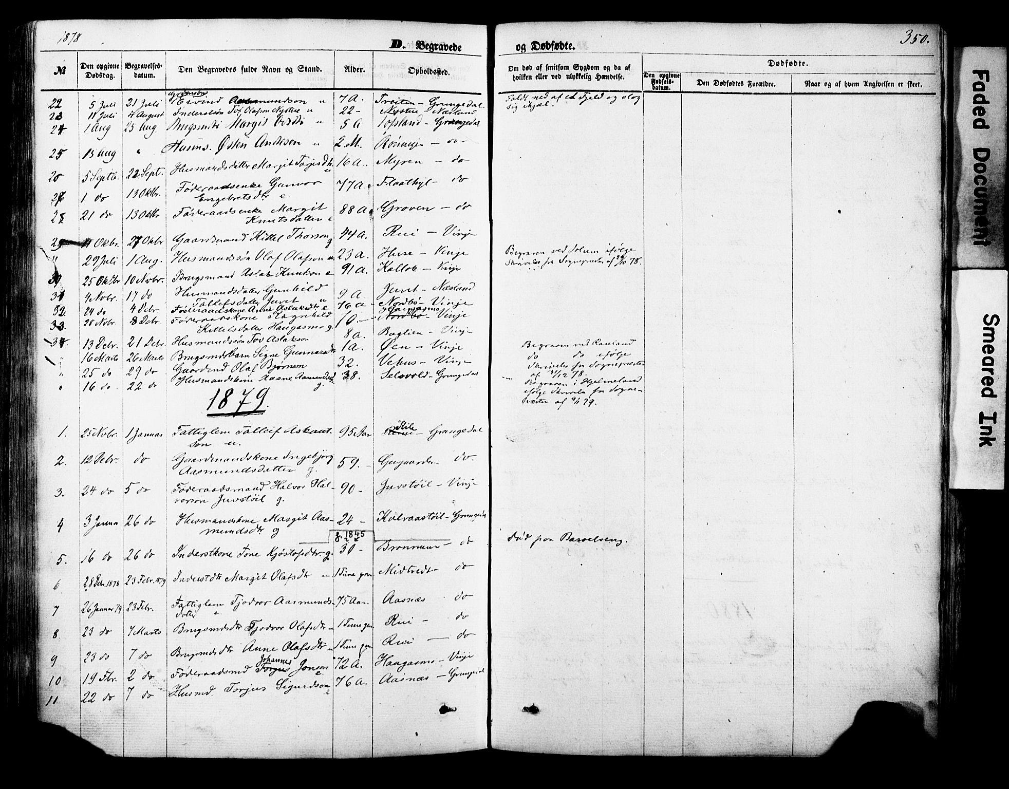 SAKO, Vinje kirkebøker, F/Fa/L0005: Ministerialbok nr. I 5, 1870-1886, s. 350