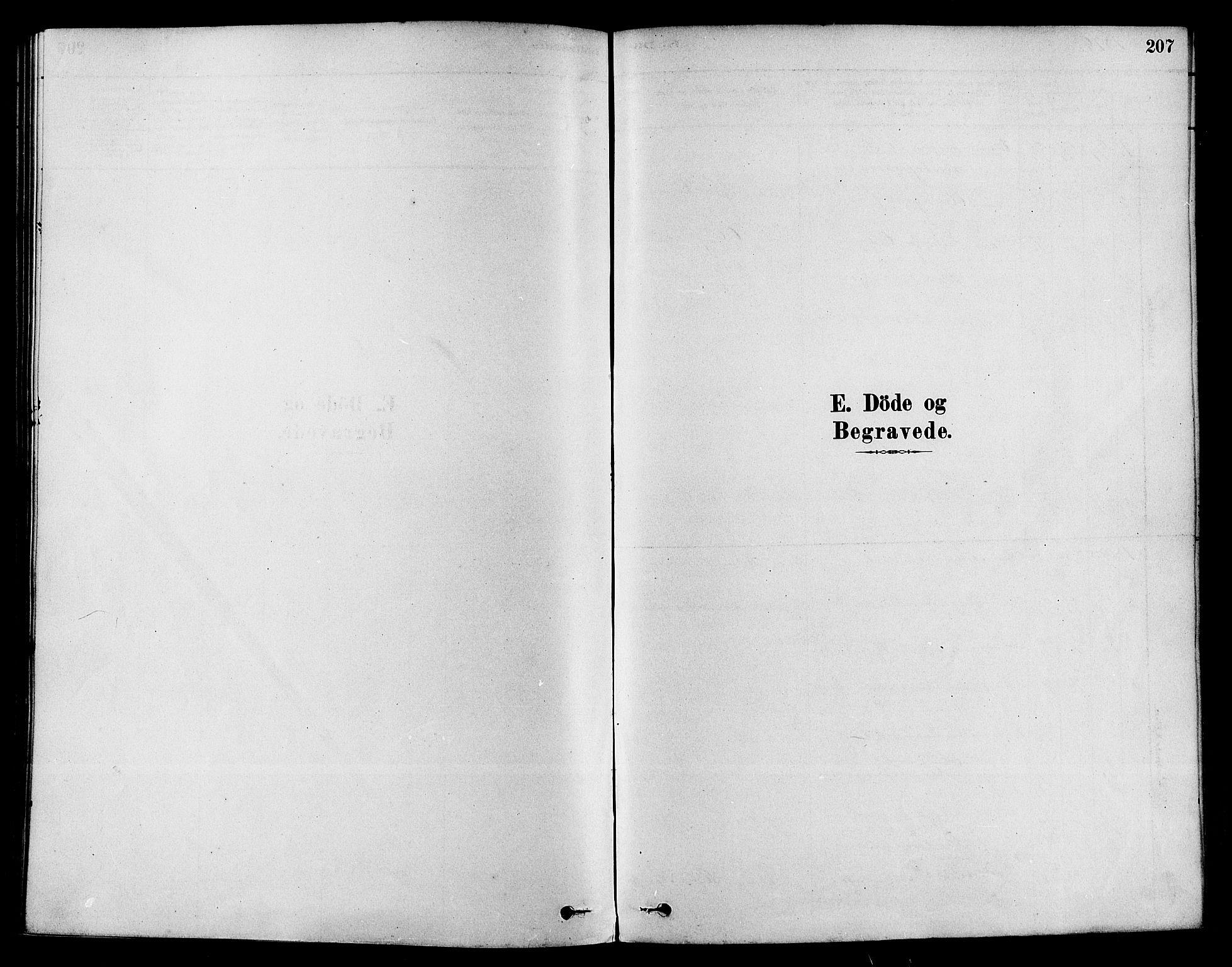 SAKO, Sigdal kirkebøker, F/Fa/L0011: Ministerialbok nr. I 11, 1879-1887, s. 207