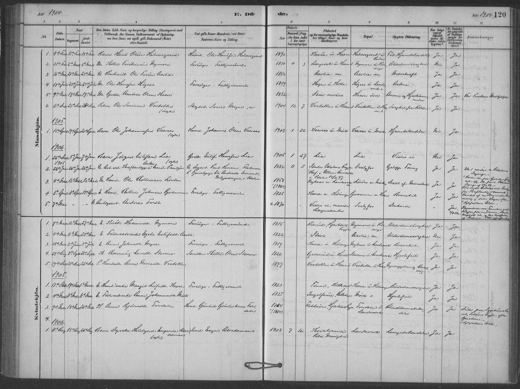 SAKO, Heddal kirkebøker, F/Fb/L0002: Ministerialbok nr. II 2, 1878-1913, s. 120