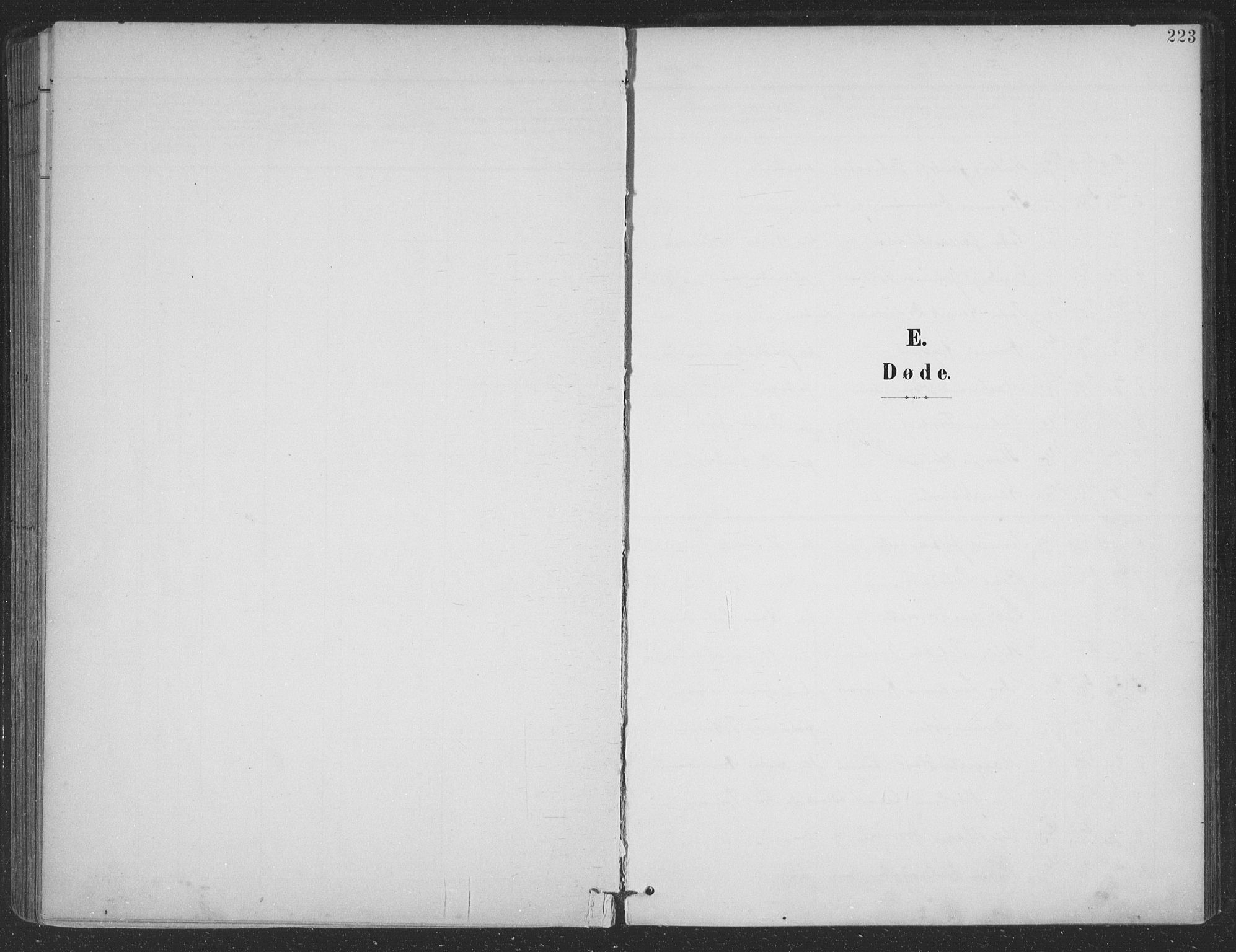 SAT, Ministerialprotokoller, klokkerbøker og fødselsregistre - Nordland, 863/L0899: Ministerialbok nr. 863A11, 1897-1906, s. 223