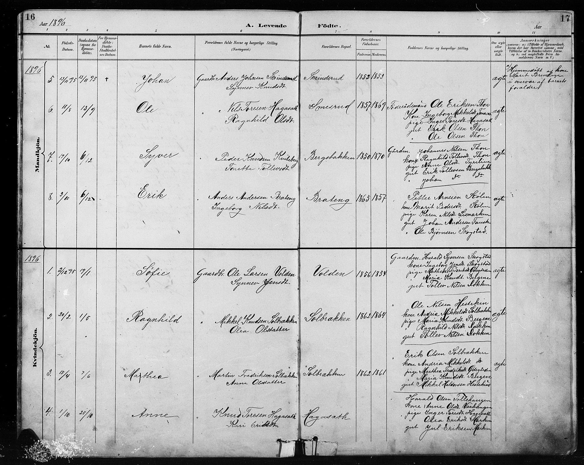 SAH, Etnedal prestekontor, H/Ha/Hab/Habb/L0001: Klokkerbok nr. II 1, 1894-1911, s. 16-17