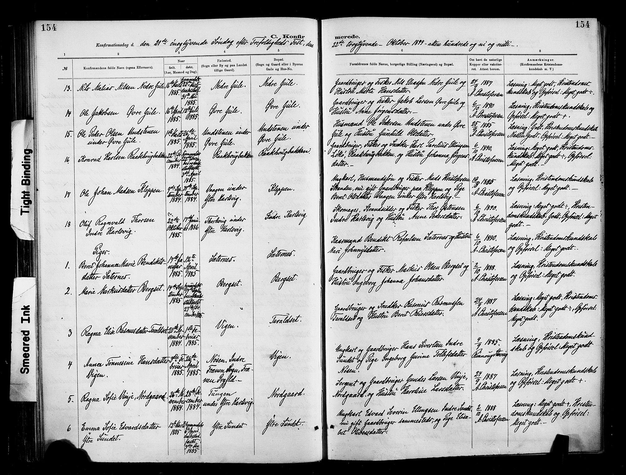 SAT, Ministerialprotokoller, klokkerbøker og fødselsregistre - Møre og Romsdal, 566/L0769: Ministerialbok nr. 566A08, 1881-1903, s. 154