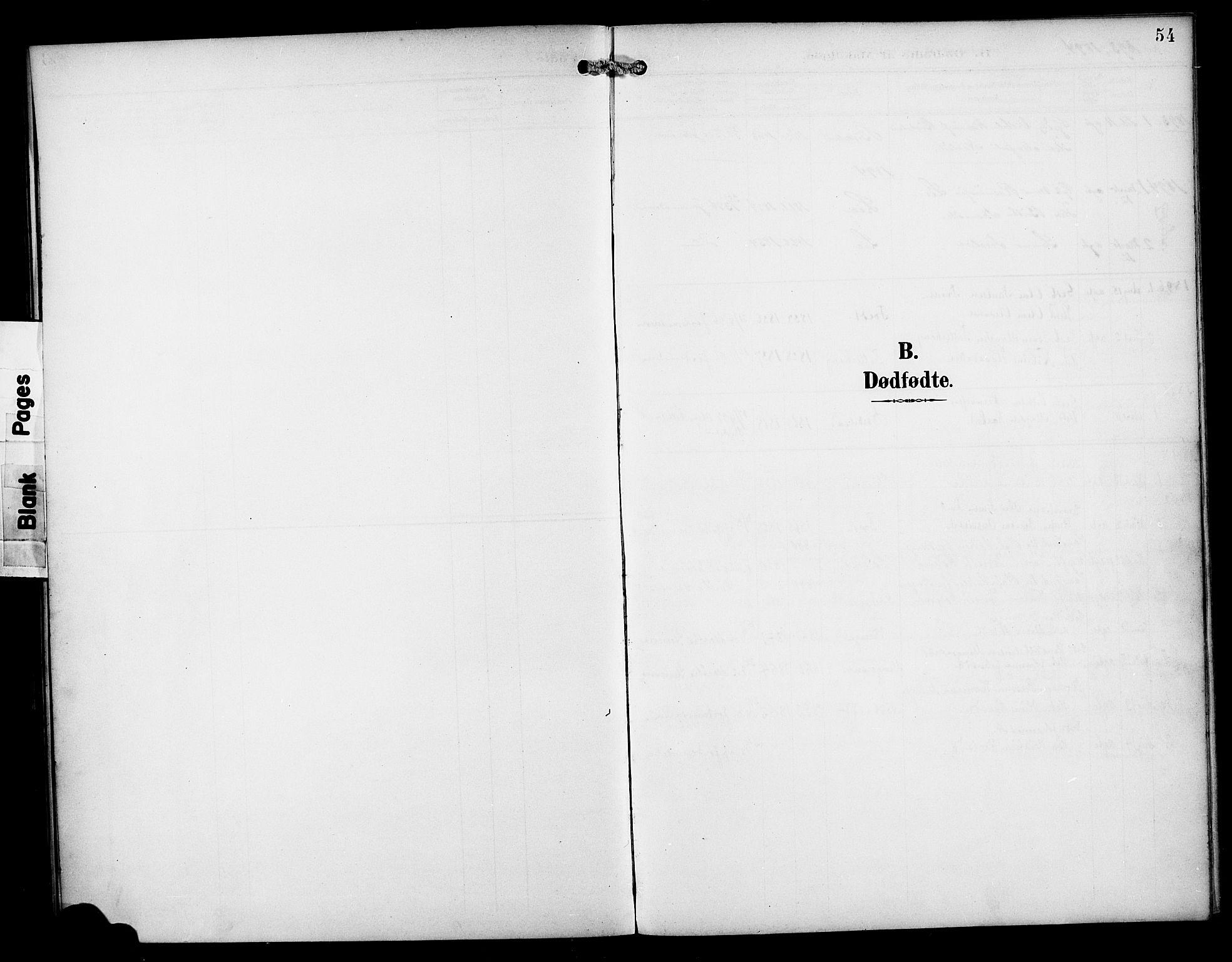 SAB, Manger sokneprestembete, H/Haa: Ministerialbok nr. B 2, 1893-1906, s. 54