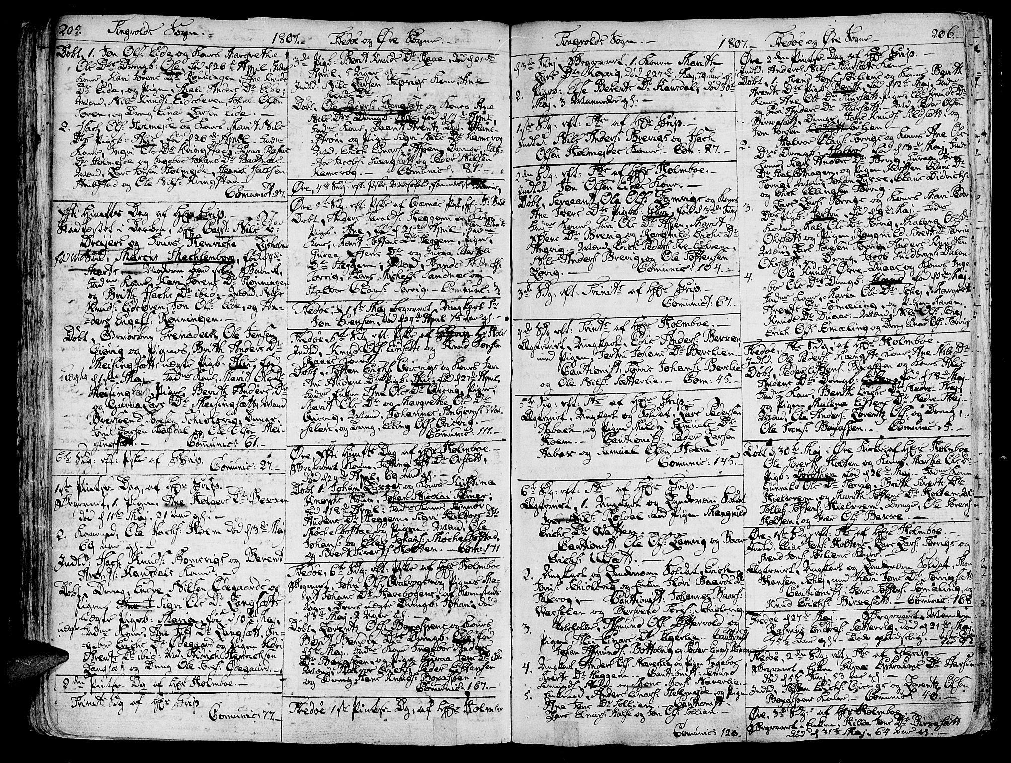SAT, Ministerialprotokoller, klokkerbøker og fødselsregistre - Møre og Romsdal, 586/L0981: Ministerialbok nr. 586A07, 1794-1819, s. 205-206