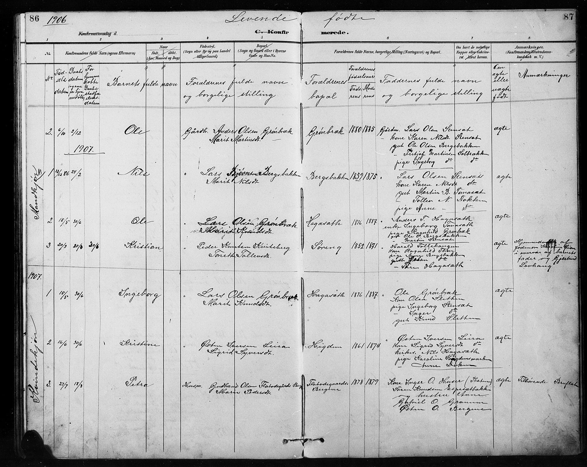 SAH, Etnedal prestekontor, H/Ha/Hab/Habb/L0001: Klokkerbok nr. II 1, 1894-1911, s. 86-87