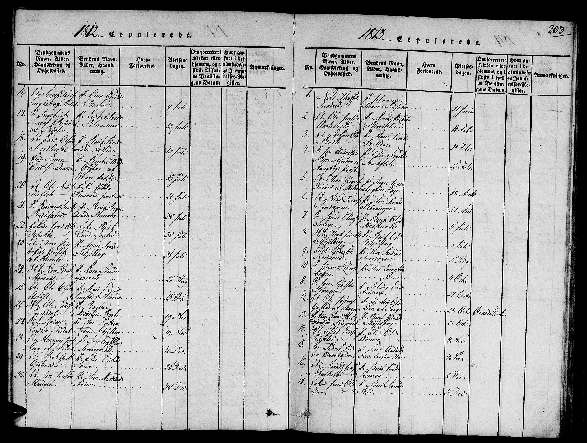 SAT, Ministerialprotokoller, klokkerbøker og fødselsregistre - Sør-Trøndelag, 668/L0803: Ministerialbok nr. 668A03, 1800-1826, s. 203