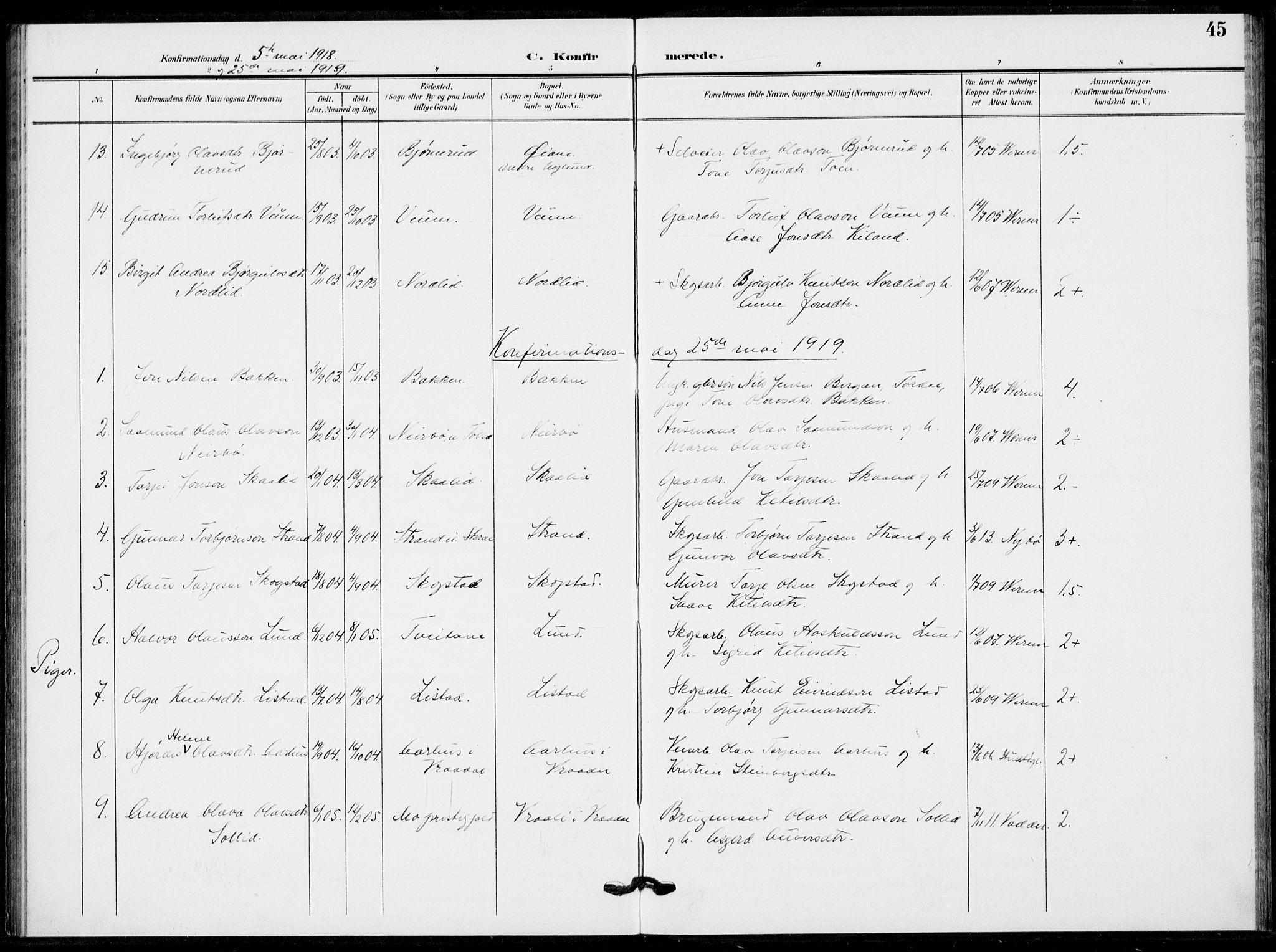 SAKO, Fyresdal kirkebøker, F/Fb/L0004: Ministerialbok nr. II 4, 1903-1920, s. 45